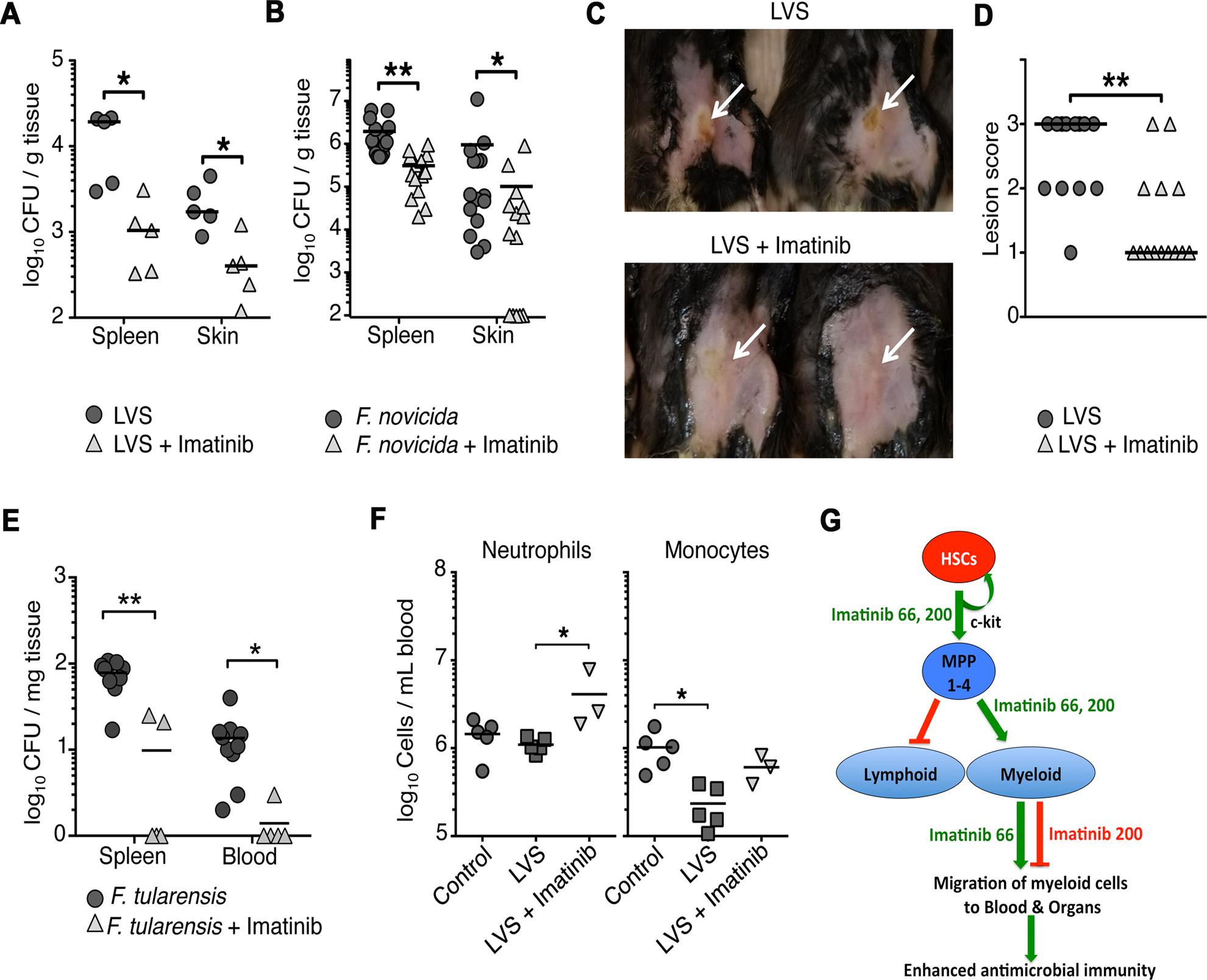 Imatinib decreases bacterial load of pathogenic <i>Francisella spp</i>. <i>in vivo</i>.