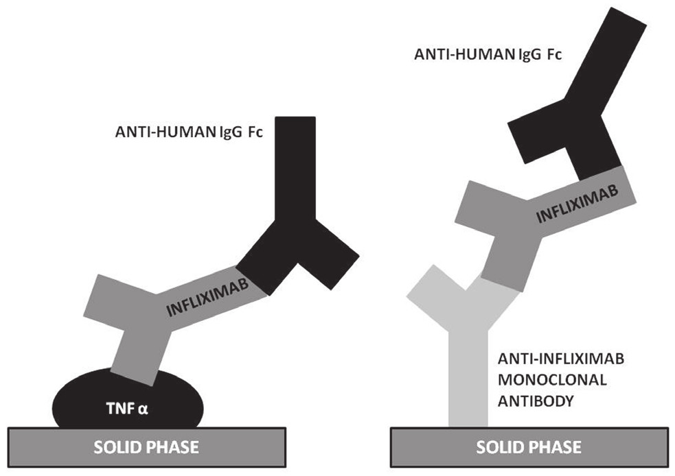 Figure 1. Detection of infliximab serum though levels by enzyme immunoassays - two priniciples