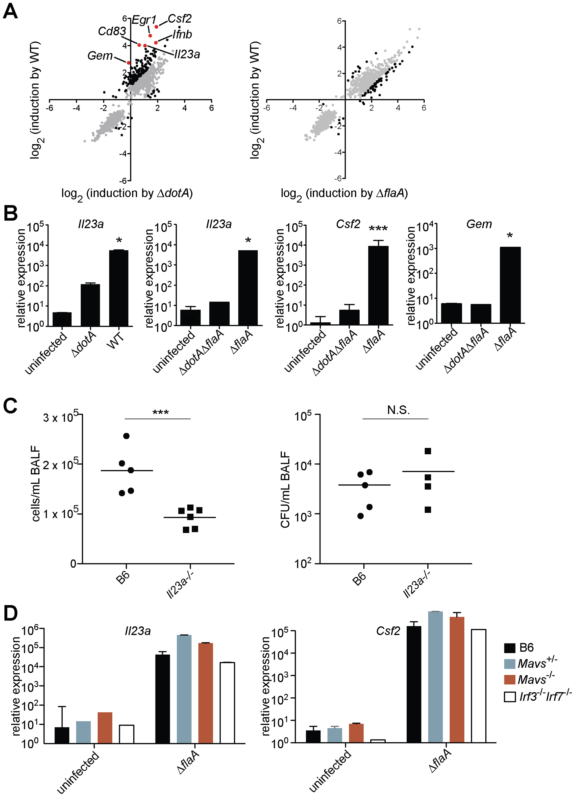 A unique transcriptional response in macrophages infected with virulent <i>L. pneumophila</i>.
