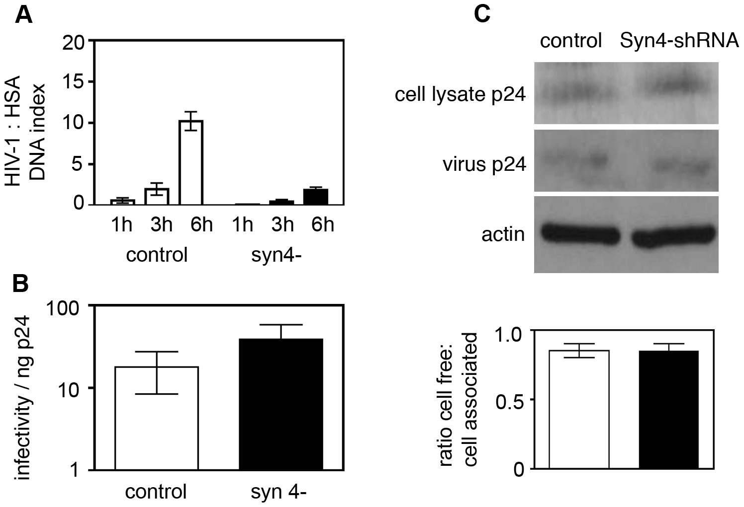 Syntaxin 4 contributes to cell-to-cell spread of HIV-1.
