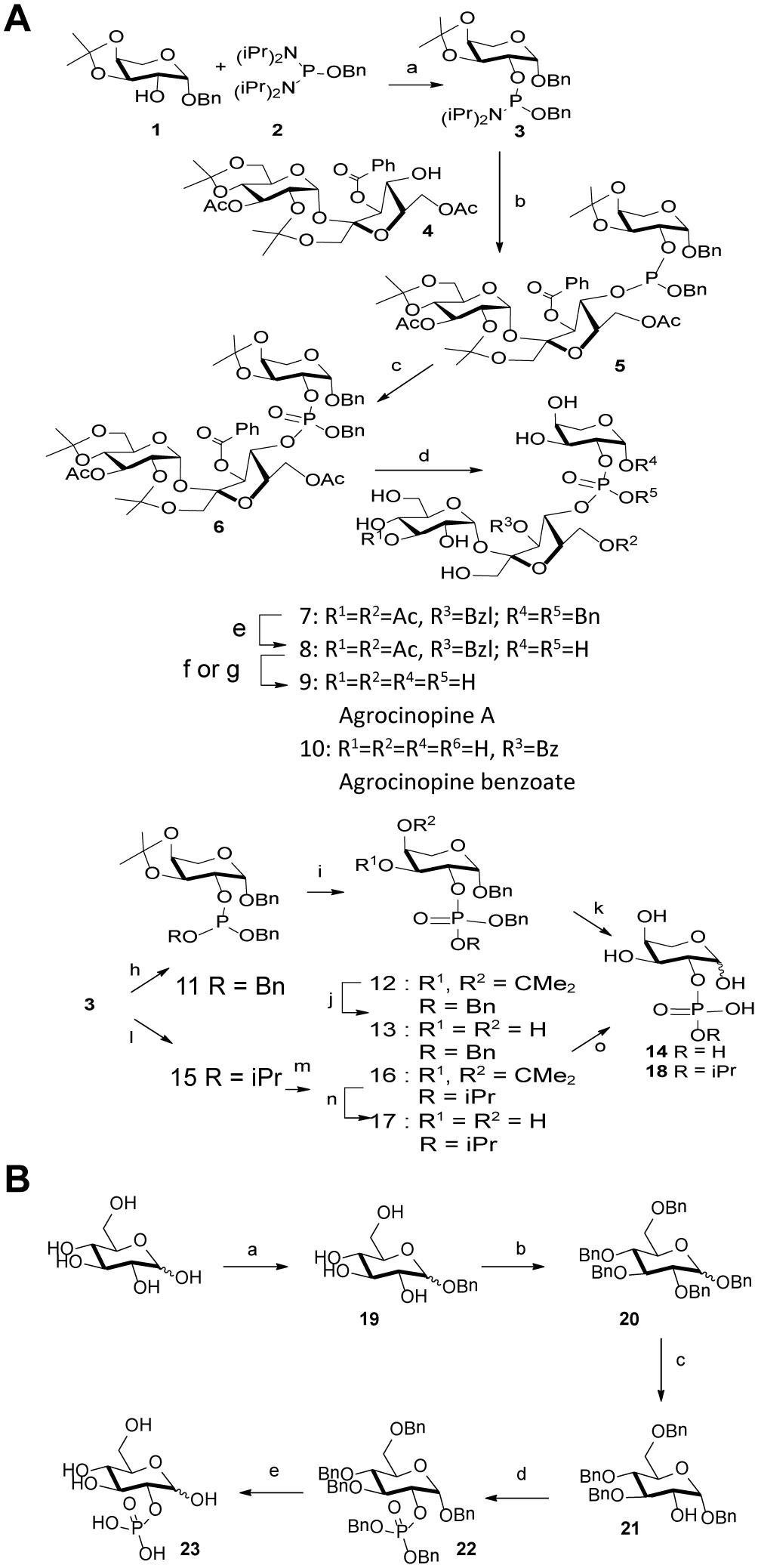 Synthesis scheme.