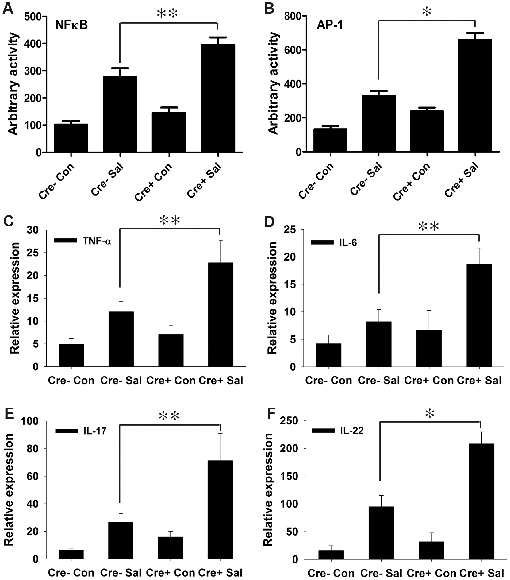 PPARγ depletion from intestinal epithelium augments the immune response to <i>S.</i> Typhimurium infection.