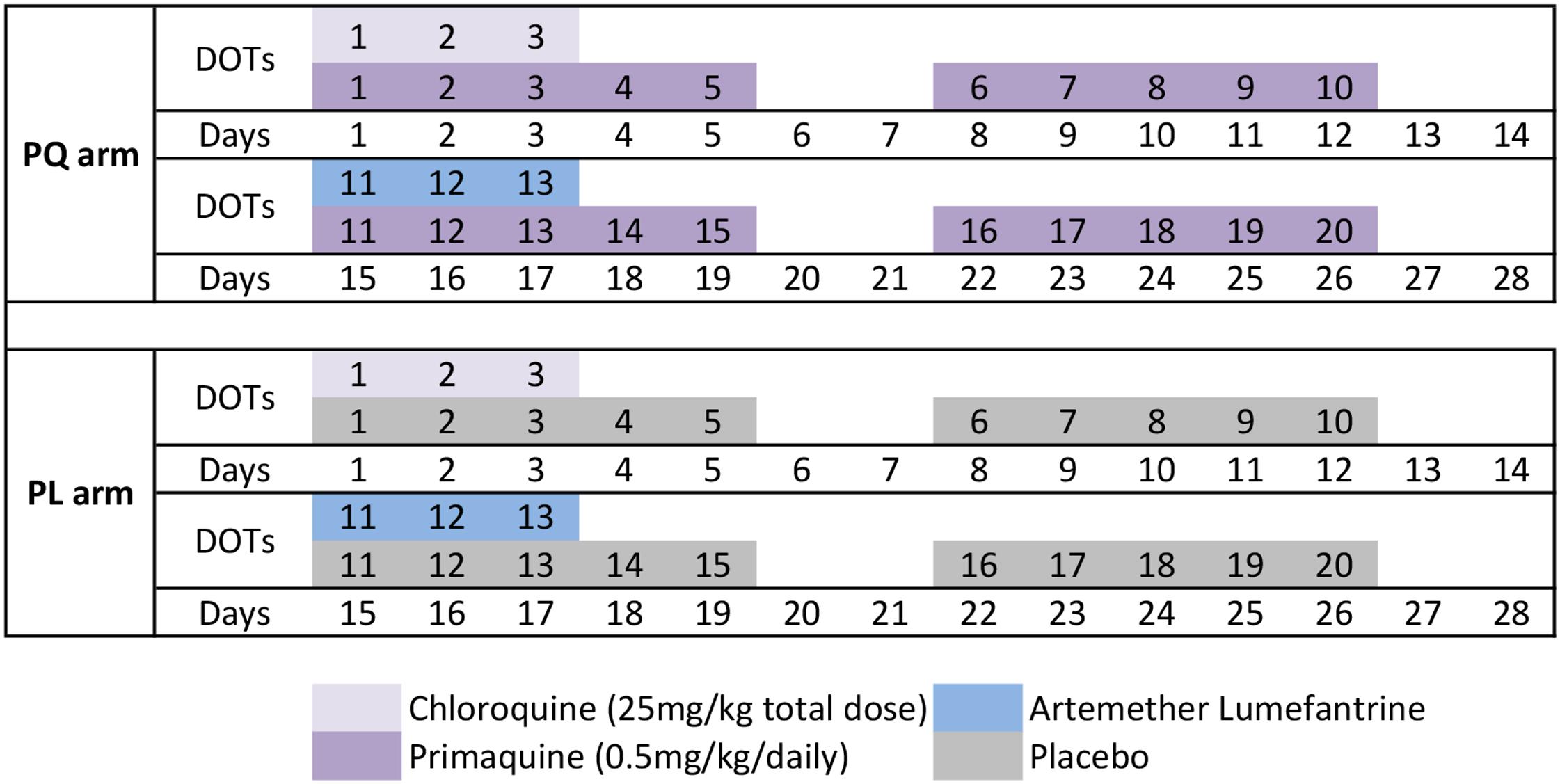 Drug administration schedule.