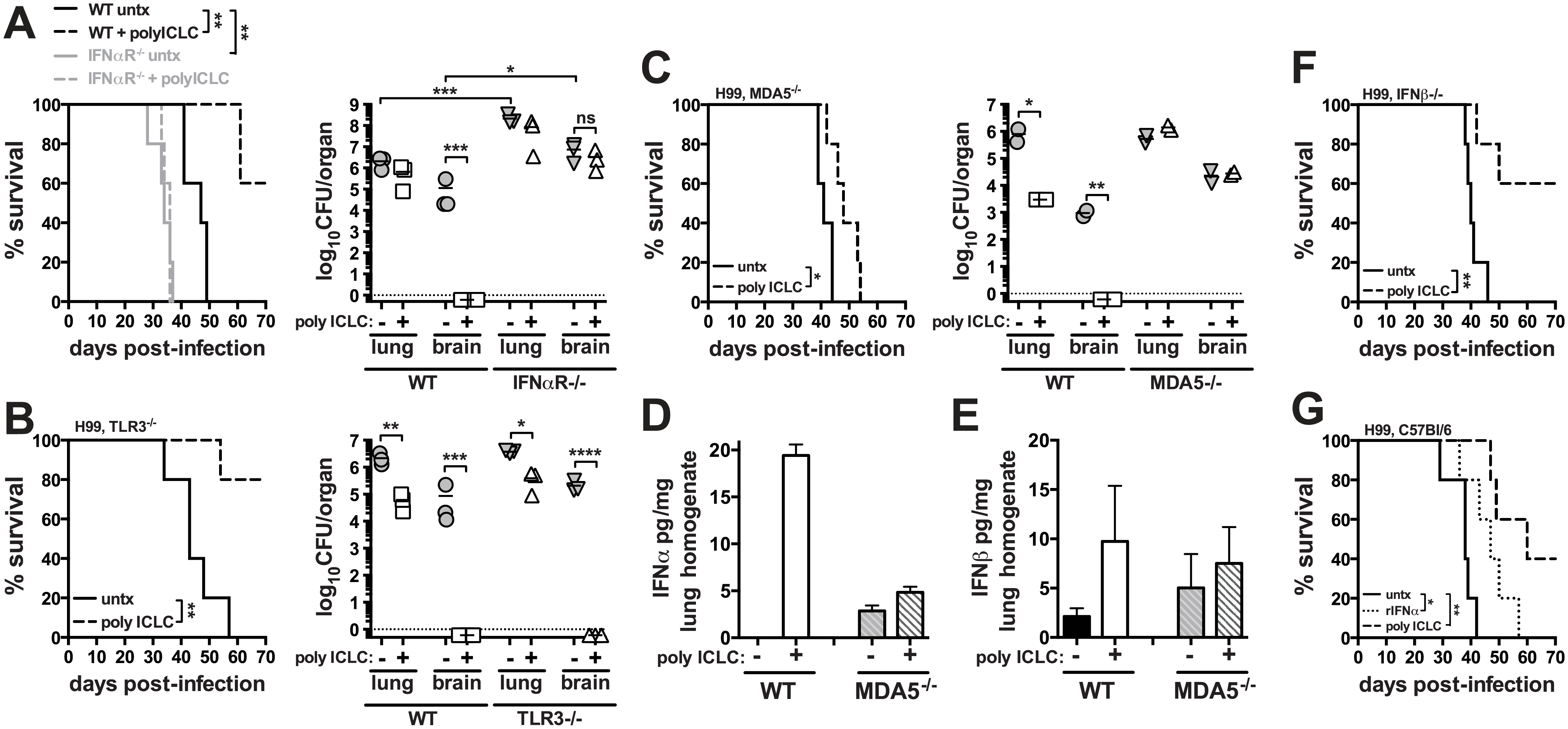 Treatment of mice with pICLC protects against <i>C</i>. <i>neoformans</i> infection through the MDA5-dependent induction of type I interferon.