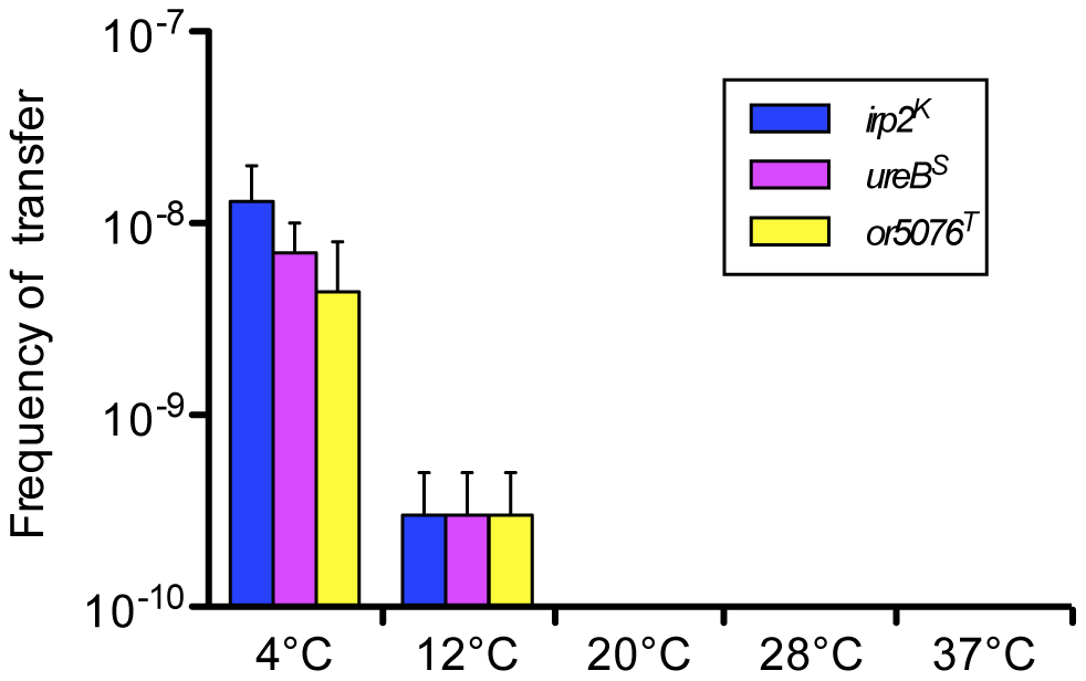 Transfer frequencies at various temperatures of three distantly located chromosomal loci.
