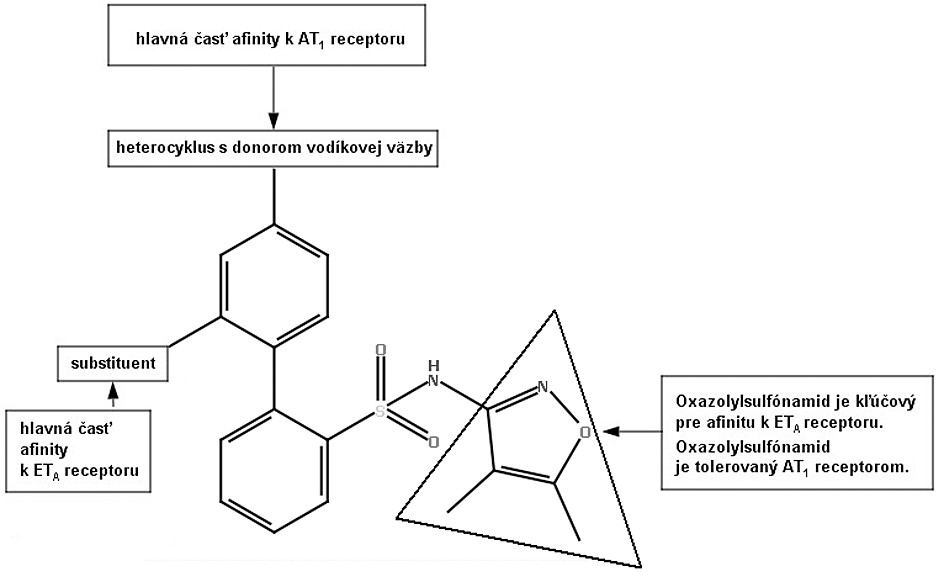 Model farmakofóru duálnych antagonistov ANG-II a ET-149)