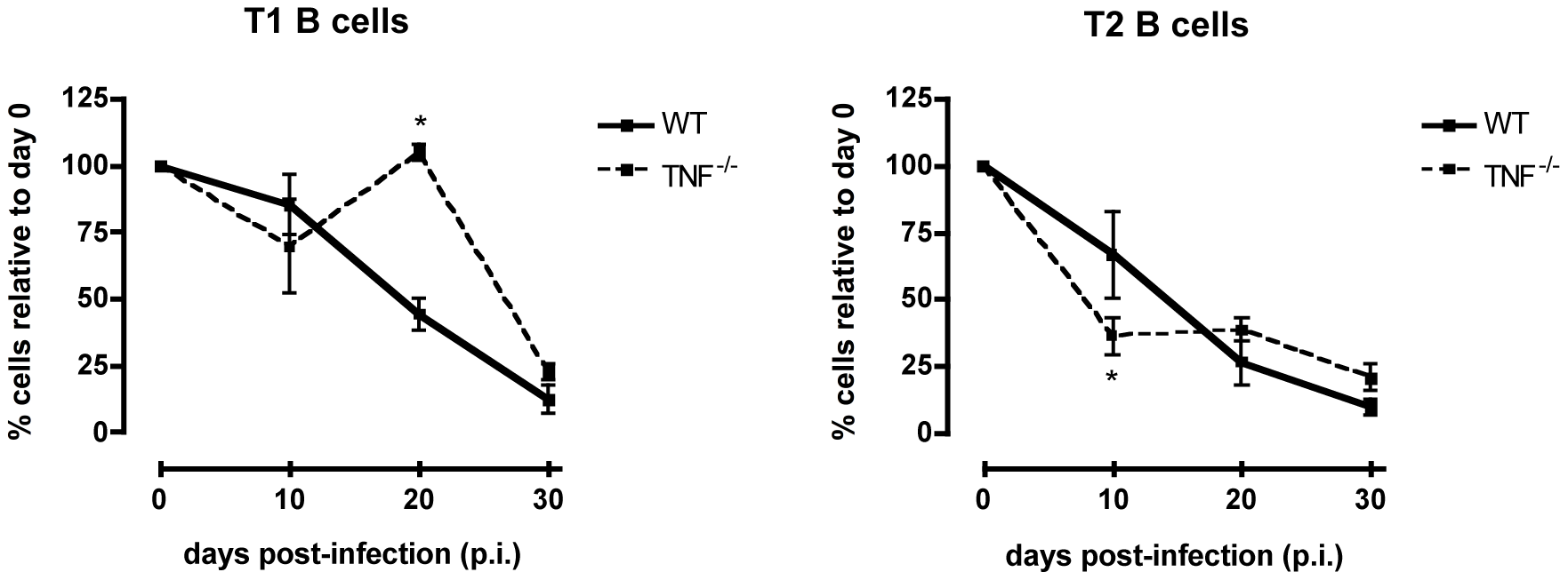 Transitional T1 and T2 B cells in <i>T. brucei</i>-infected C57Bl/6 WT versus TNF<sup>−/−</sup> mice.