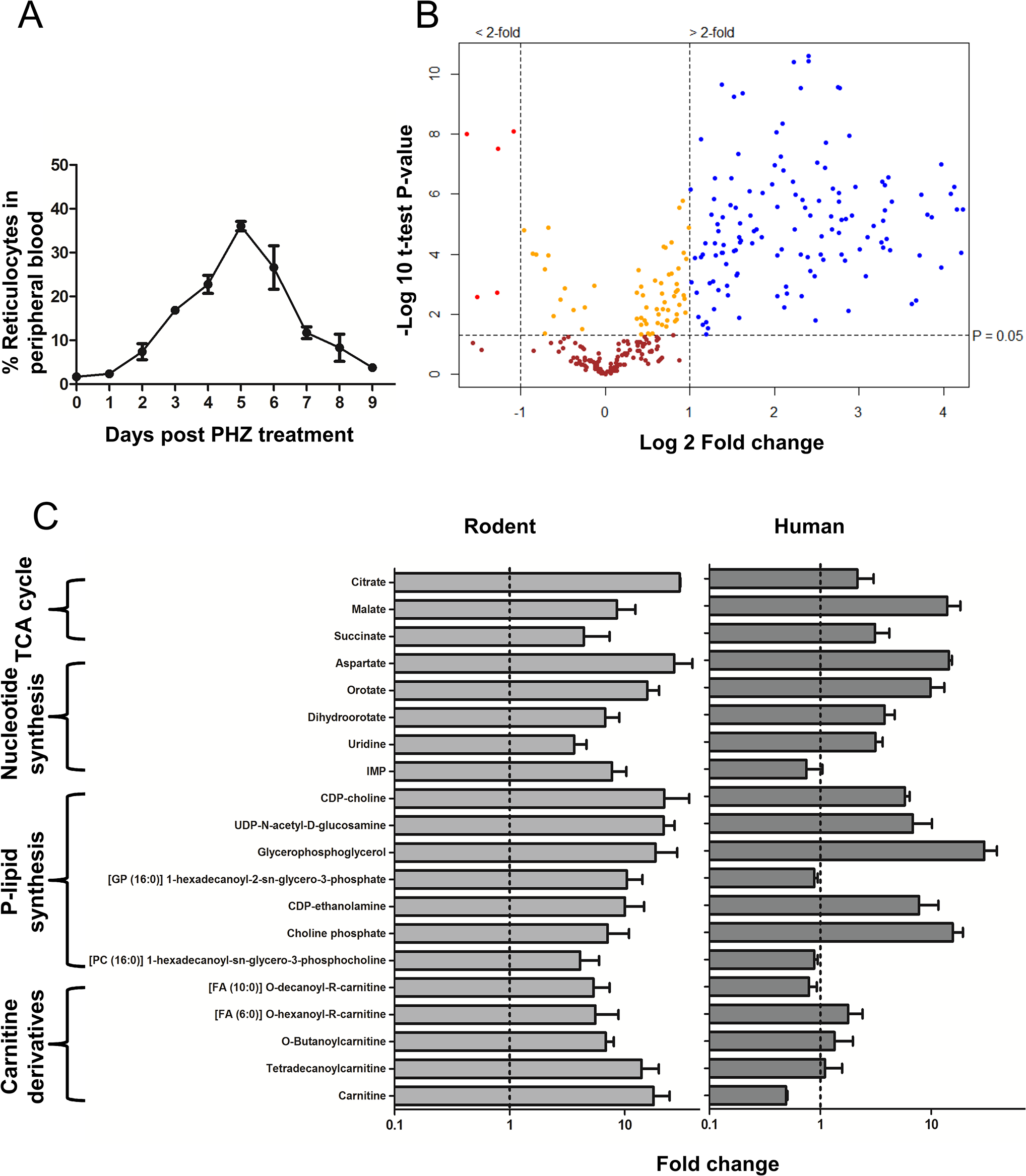Comparison of Reticulocyte enriched Erythrocyte Population (REP) and wild type Erythrocyte Population (wtEP) reveals metabolite enrichment in rodent and human reticulocytes.