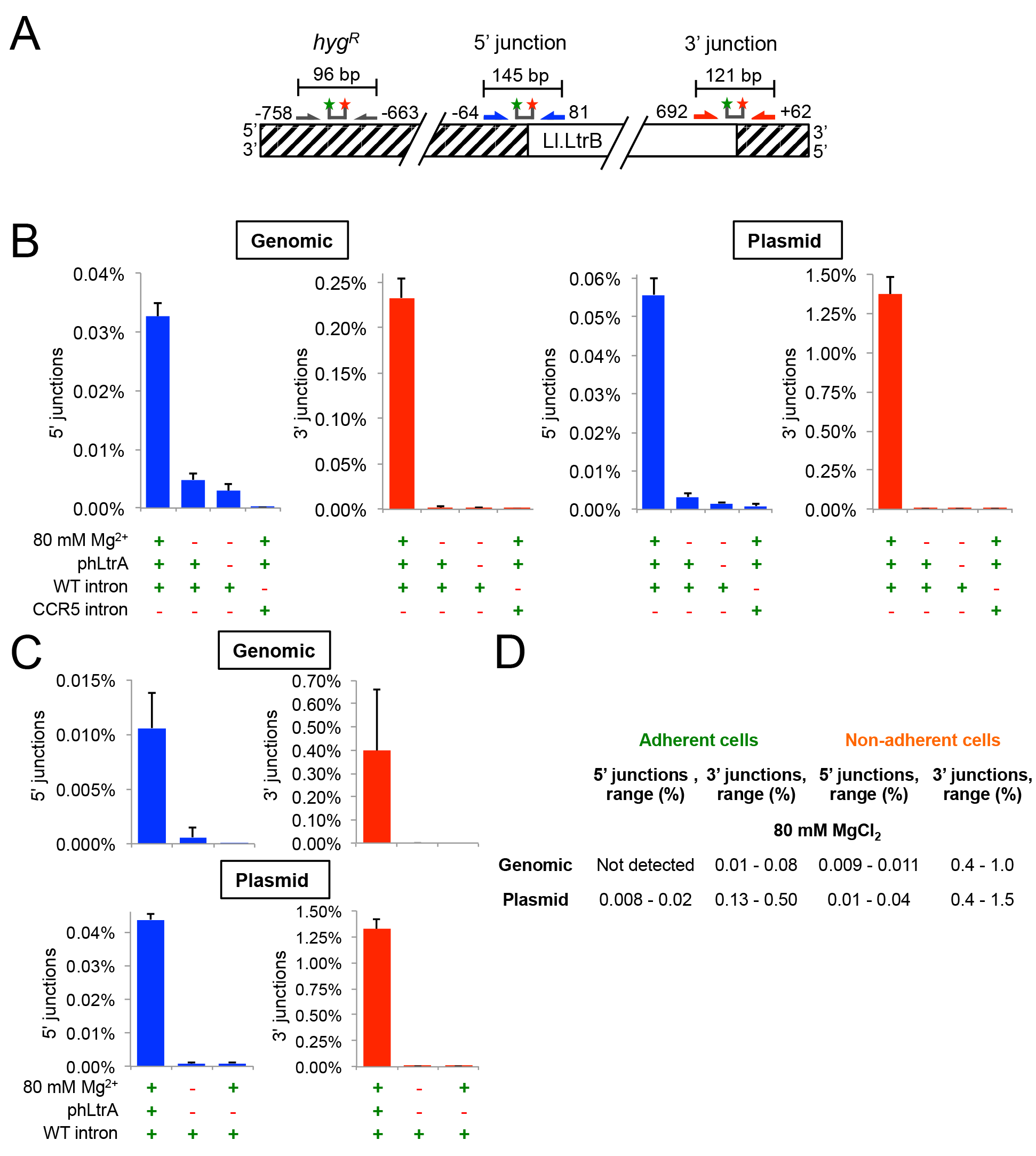The group II intron Ll.LtrB can retrohome into genomic and plasmid target sites in human cells after addition of Mg<sup>2+</sup> to the cell culture medium.