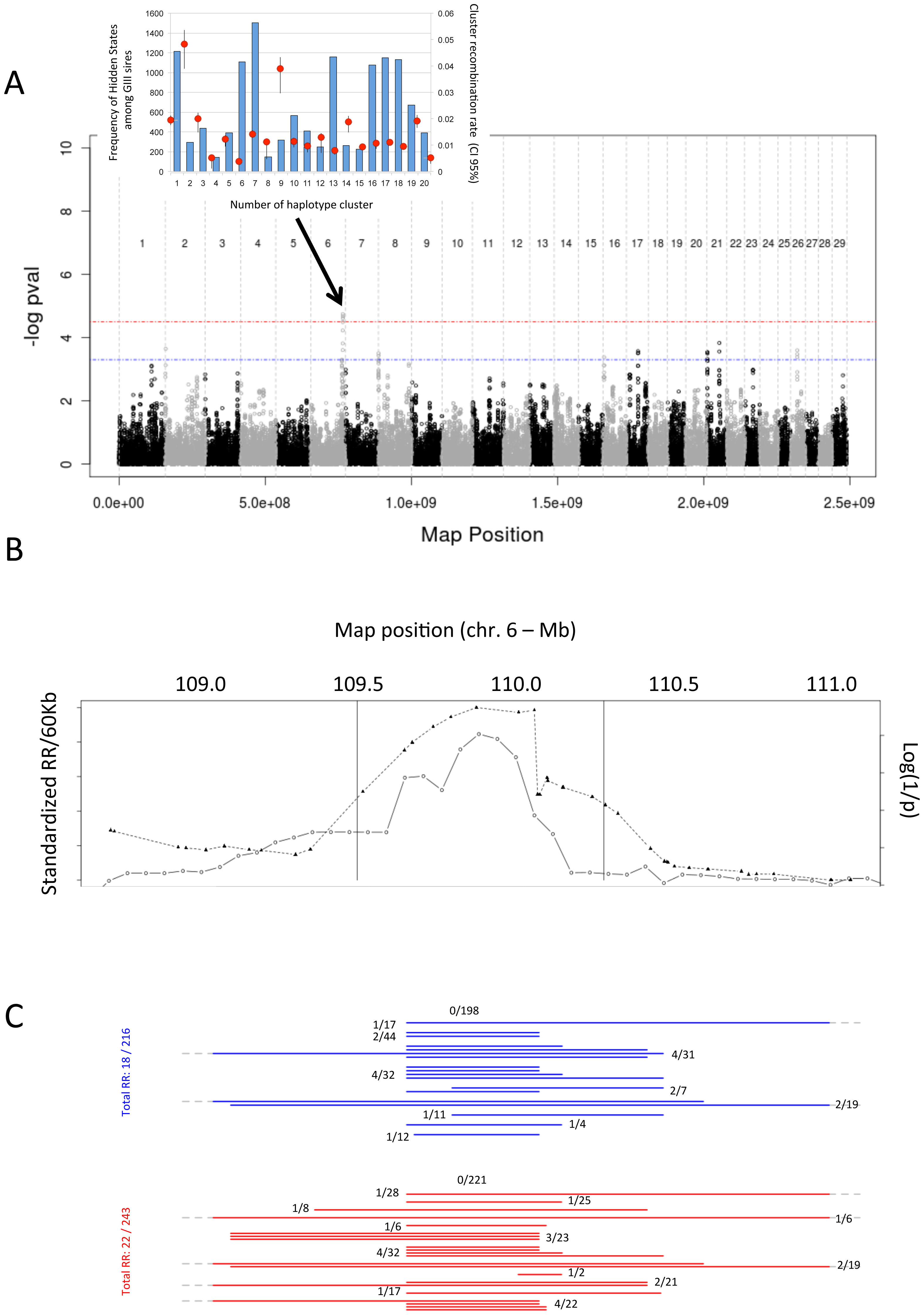 Log(1/p) values for <i>cis</i>-acting haplotype effects on local recombination rate, normalized recombination rate, and marker intervals.