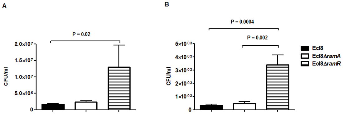 Effect of RamA on bacterial recovery using an intranasal infection model.