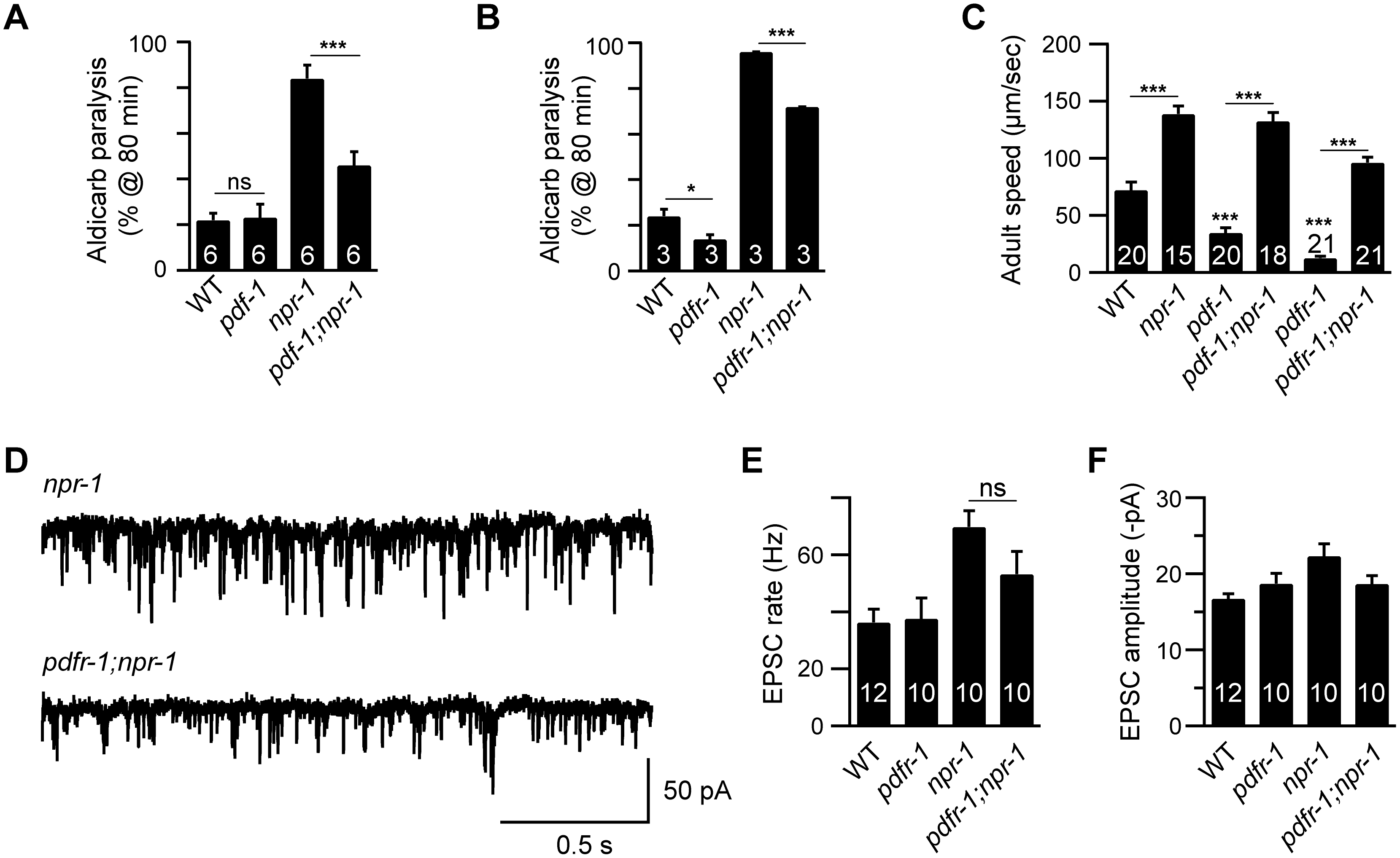 Inactivating PDF signaling does not prevent aroused locomotion in <i>npr-1</i> adults.