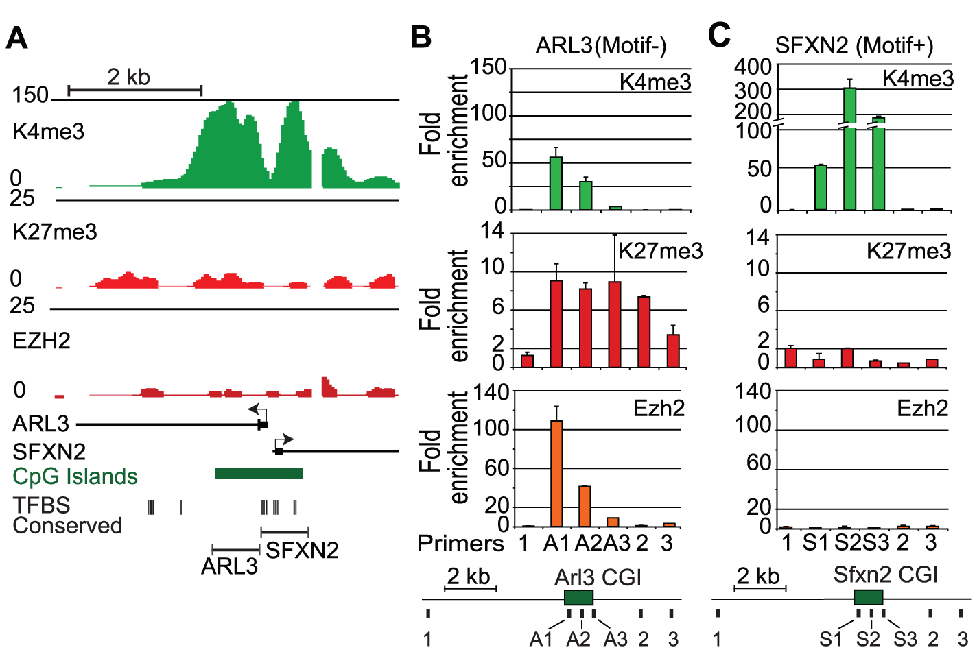 Removal of activating transcription factor motifs initiates PRC2 recruitment.