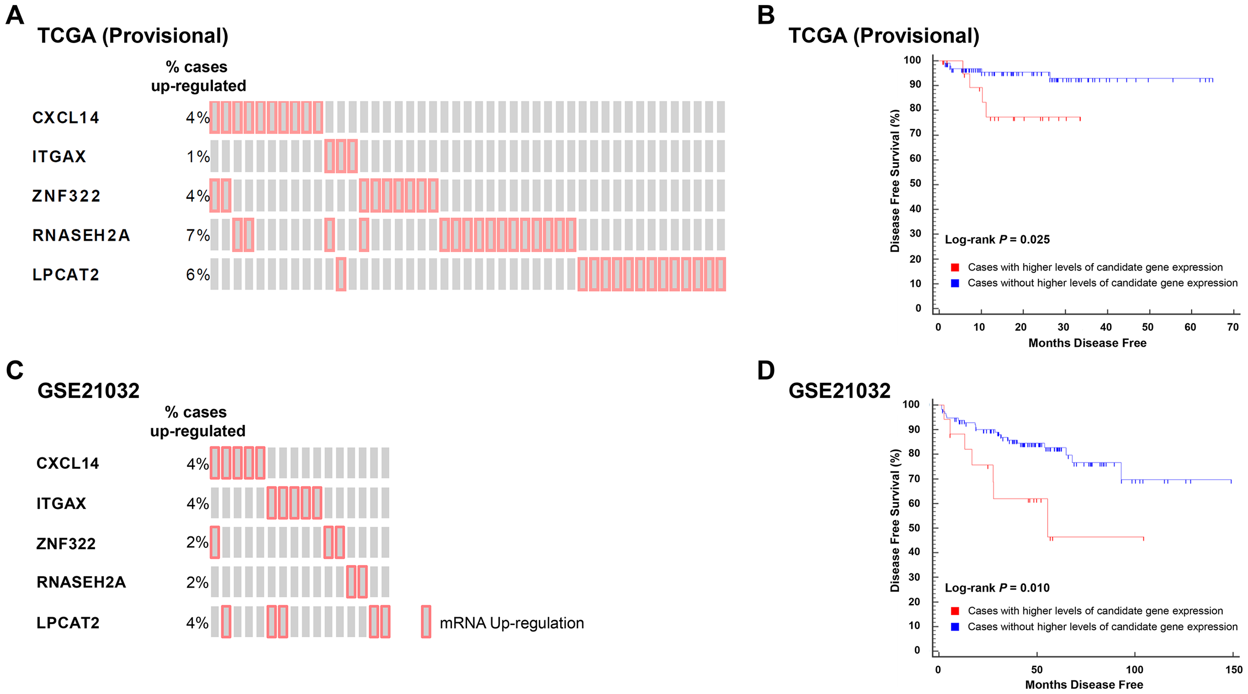 Higher levels of five QTL candidate genes are associated with poor DFS in TCGA (Provisional) and GSE21032 prostate cancer gene expression datasets.