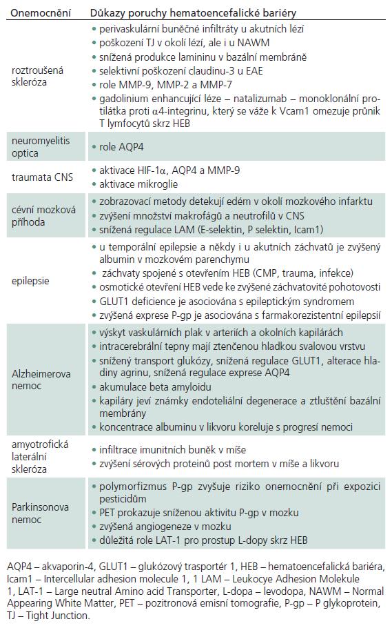 Porucha hematoencefalické bariéry u některých neurologických onemocnění.