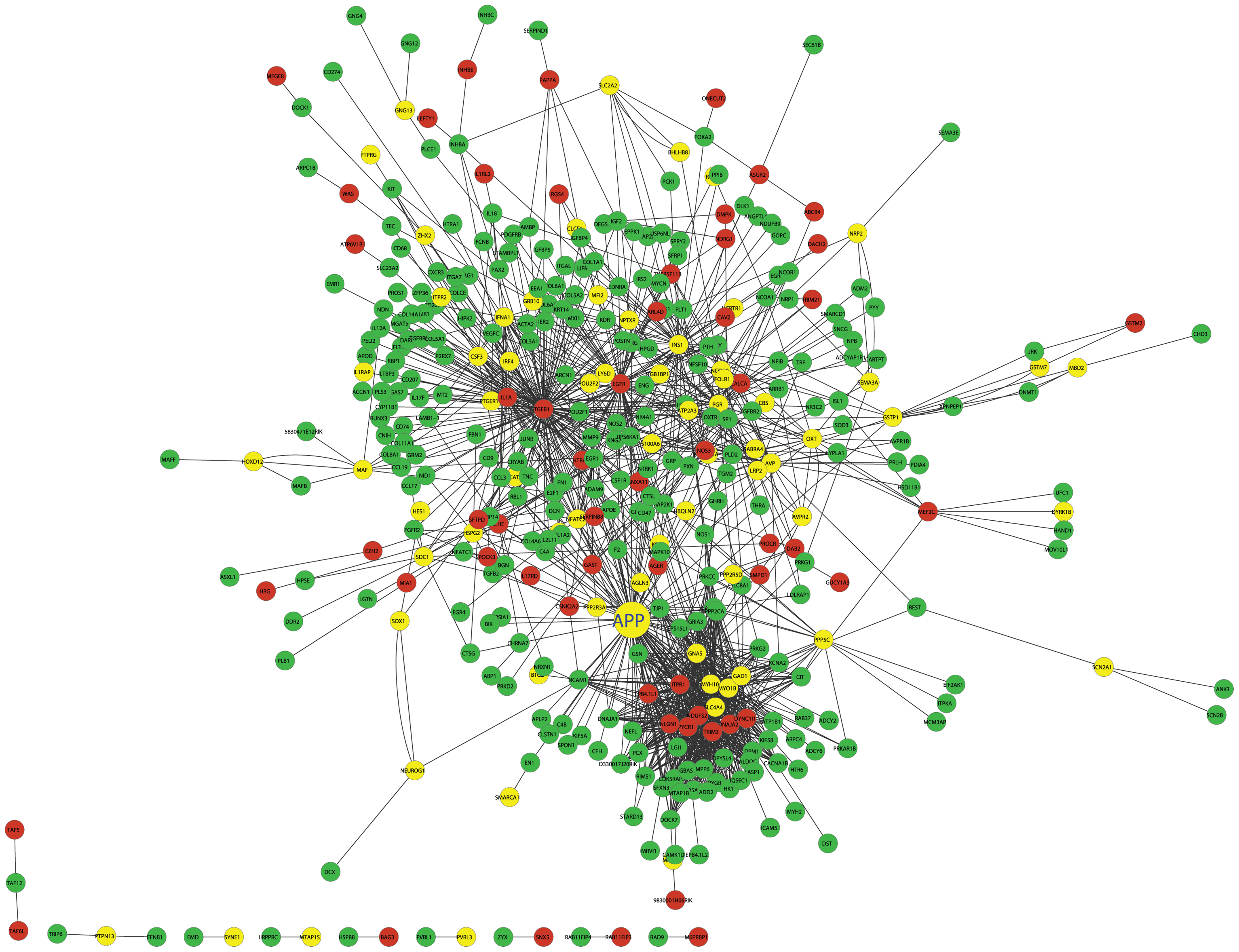 The cross eQTL group protein–protein interaction network in islets.