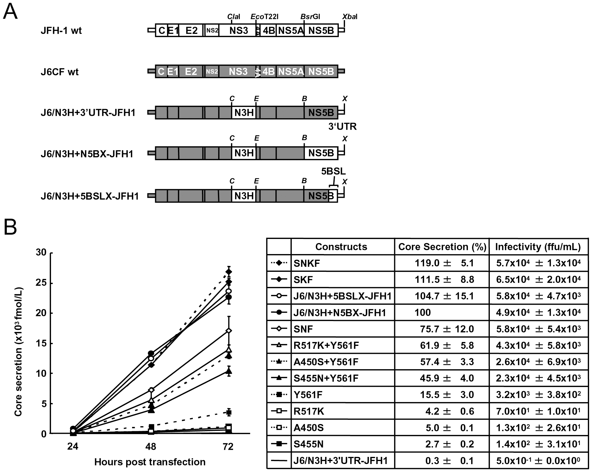 Analysis of transient replication of genomic chimeric HCV RNA.