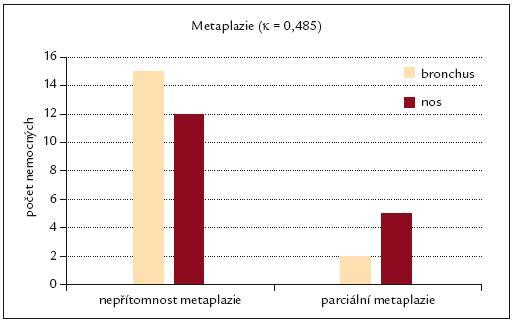 Srovnání výskytu dlaždicobuněčné metaplazie v oblasti nosní a bronchiální sliznice.