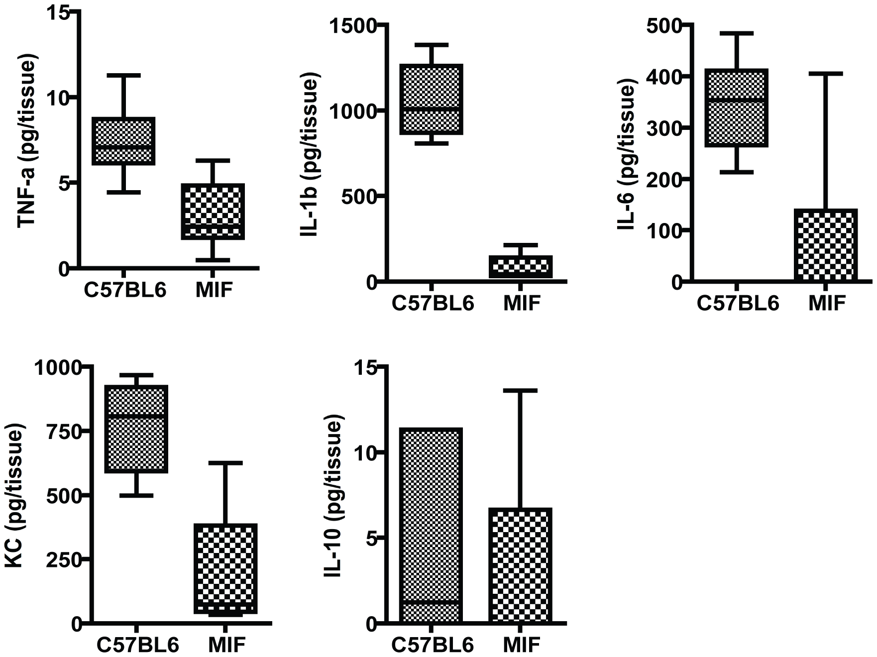 Inflammatory responses in the corneas of MIF KO and C57Bl6 mice infected with <i>P. aeruginosa</i> strain 6294.
