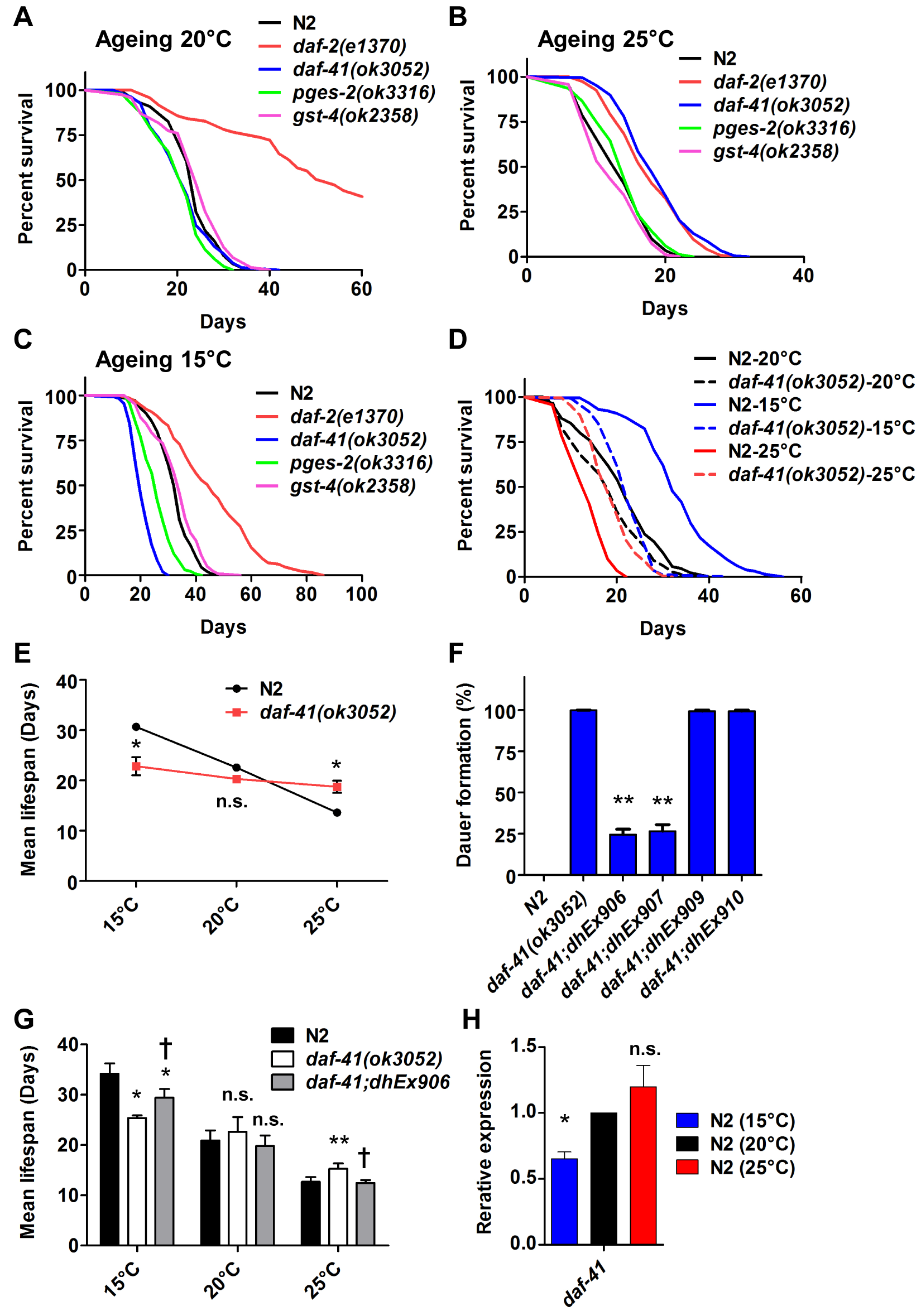 <i>daf-41</i> mutants extend lifespan at elevated temperatures and shorten life span at lower temperatures.