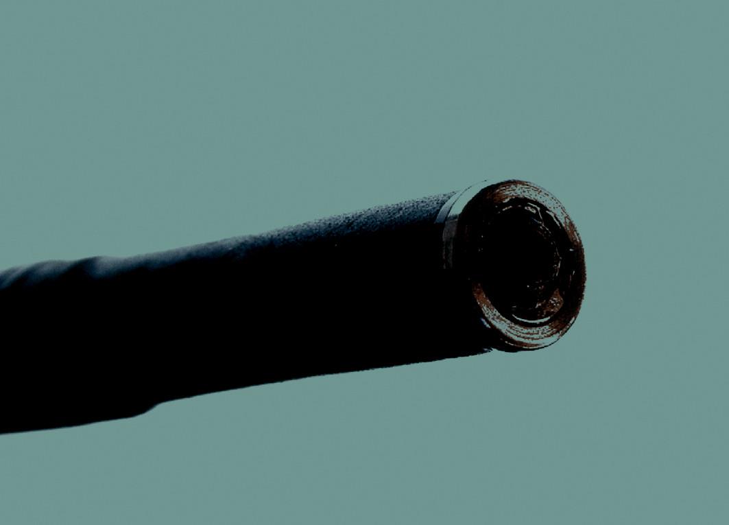 Detail endocytoskopické sondy