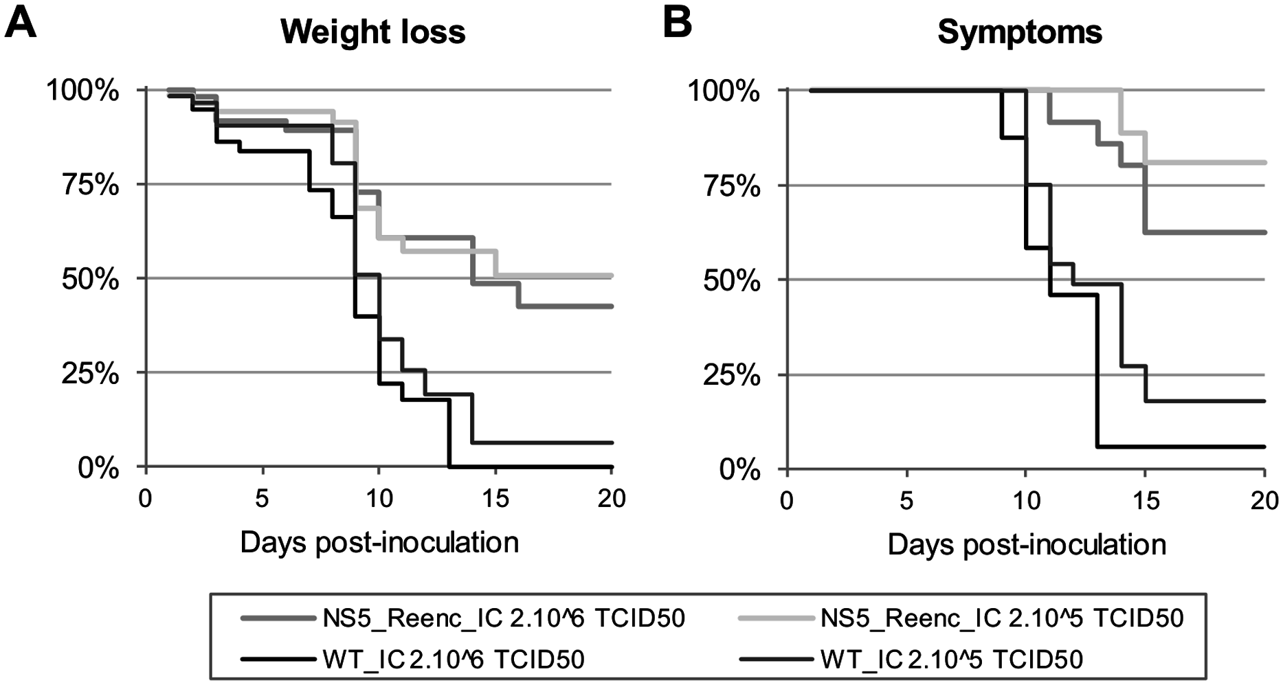 Kaplan-Meier survival analysis using as criteria, a weight loss of more than 6% (A) and appearance of at least one symptom (B).