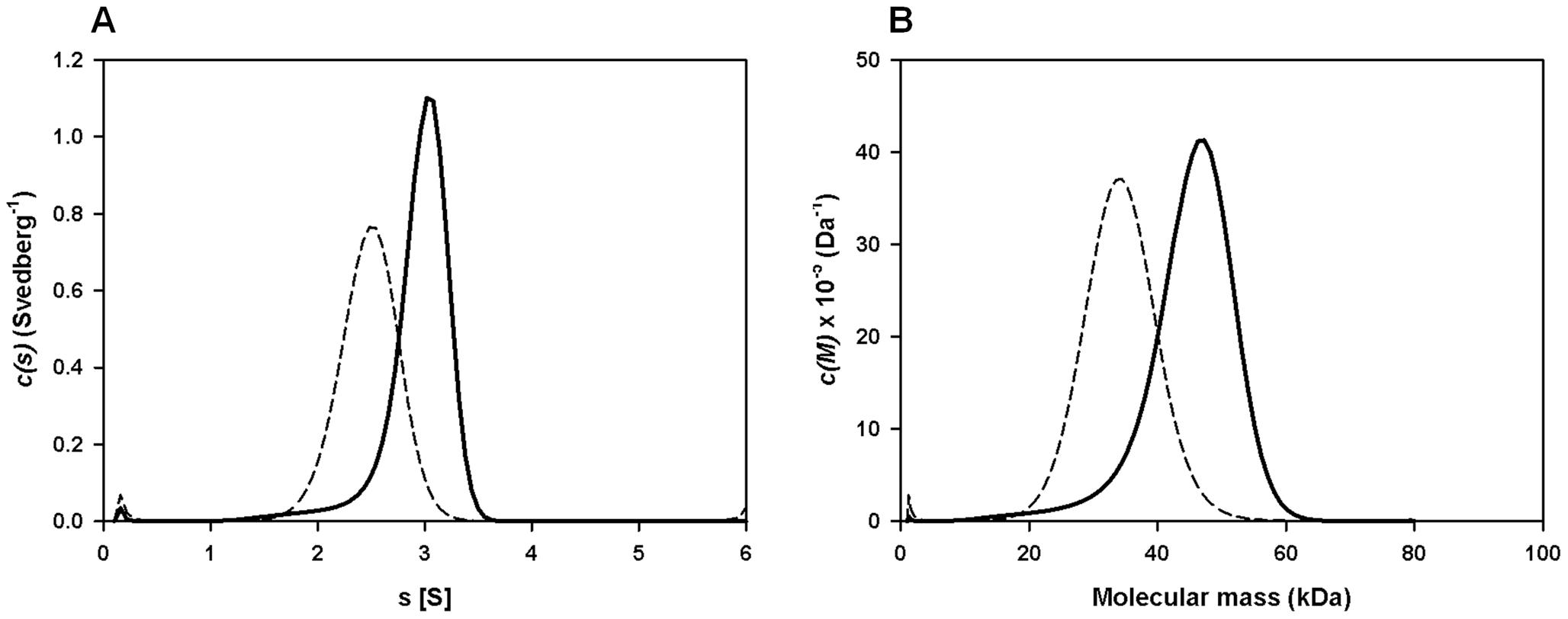 Sedimentation velocity analysis of recombinant FhHDM-1.