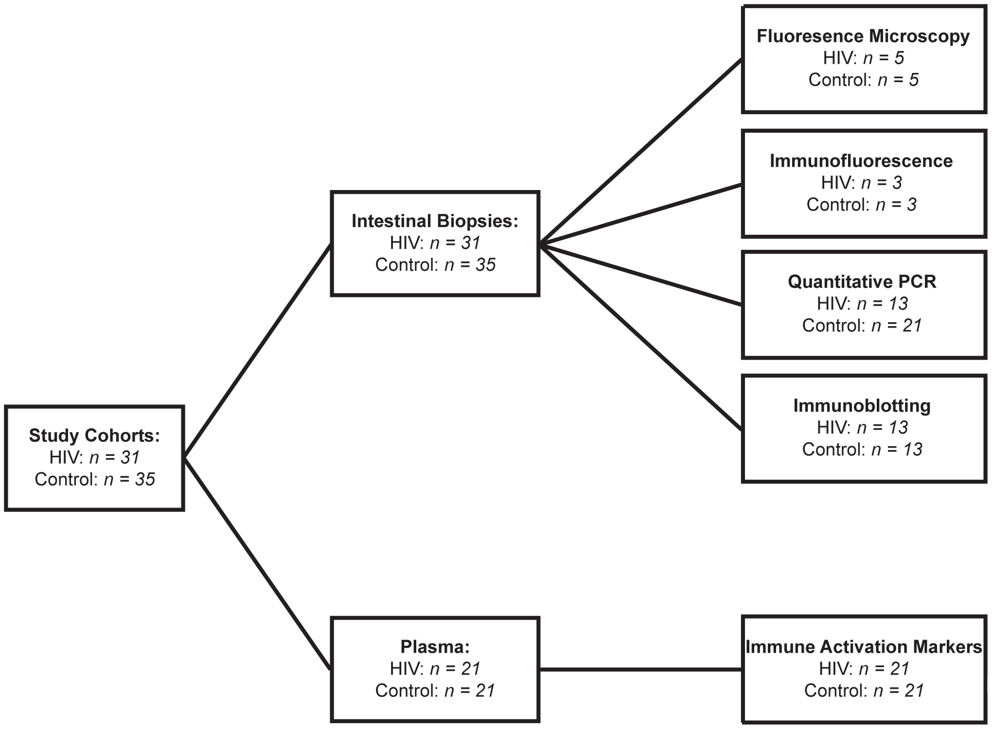 Cohort Diagram illustrating the assignment of intestinal biopsy and plasma samples to each analytical method.