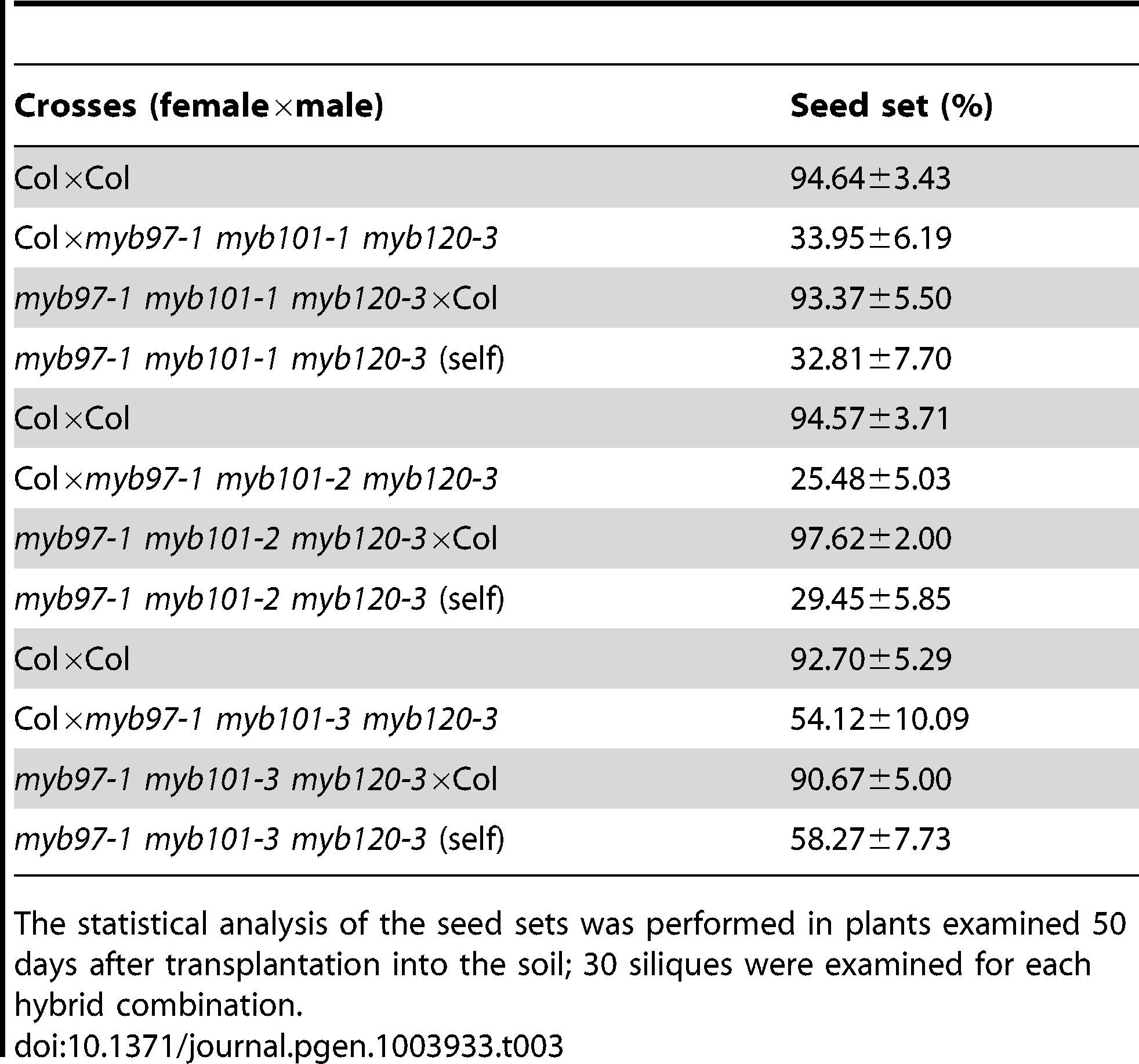 Genetic analysis of the <i>myb97 myb101 myb120</i> triple homozygous mutant.