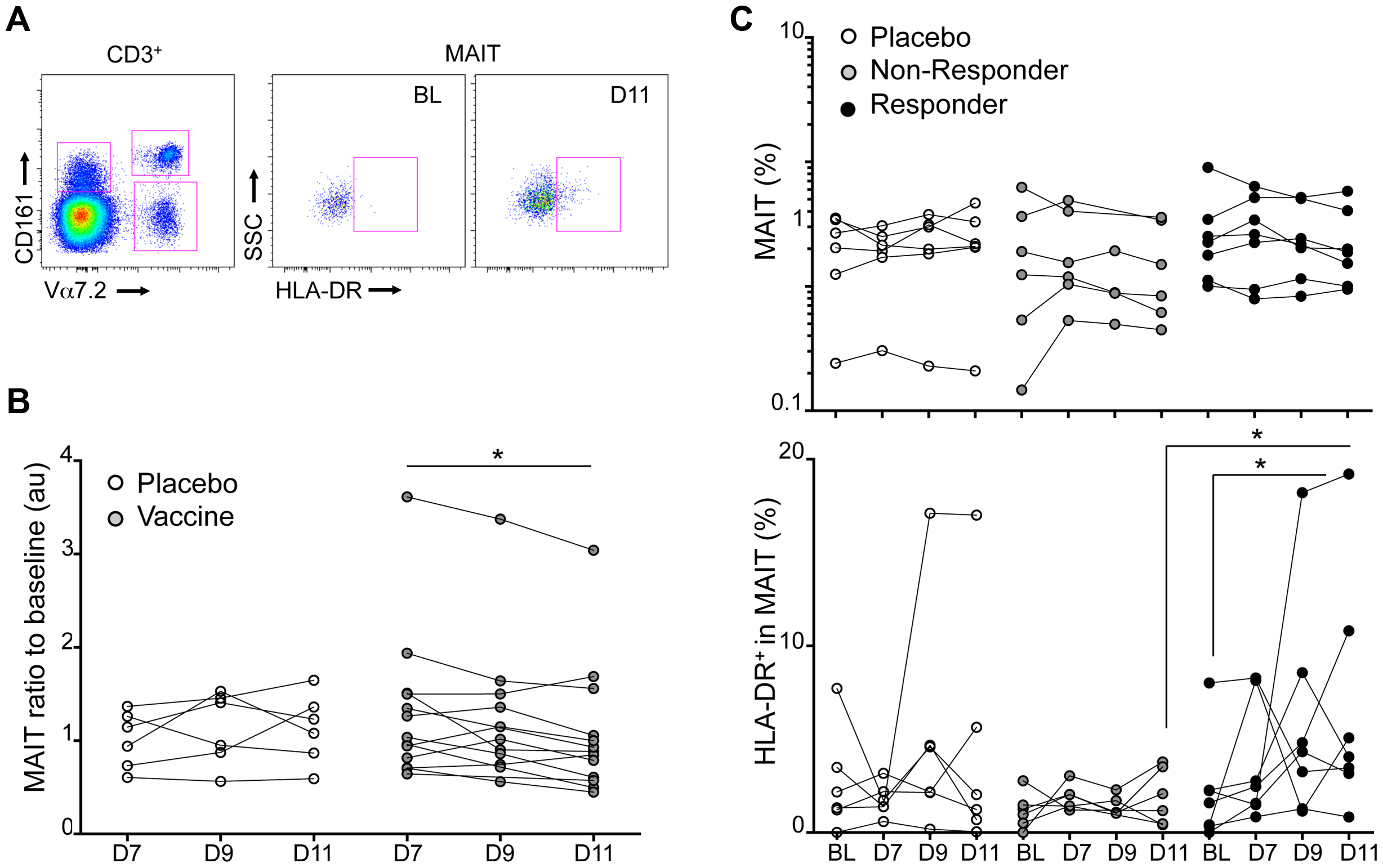 Experimental in vivo <i>Shigella flexneri</i>-infection results in MAIT cells activation.