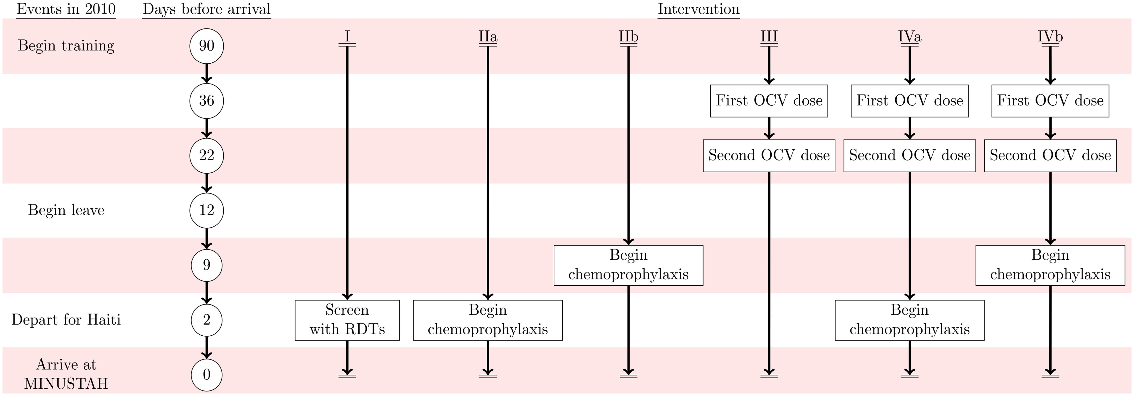 Intervention timeline.