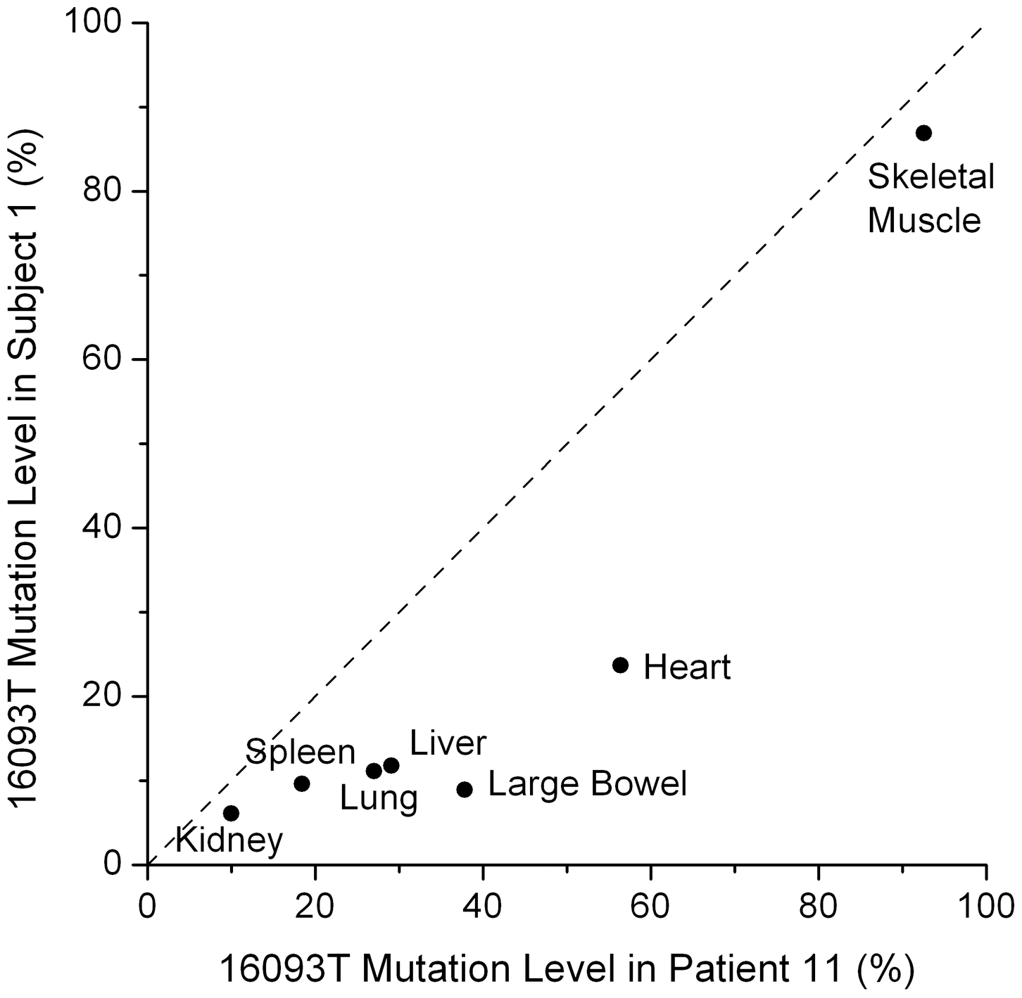 Tissue dependent heteroplasmy levels of the 16093 T/C variant across two subjects.