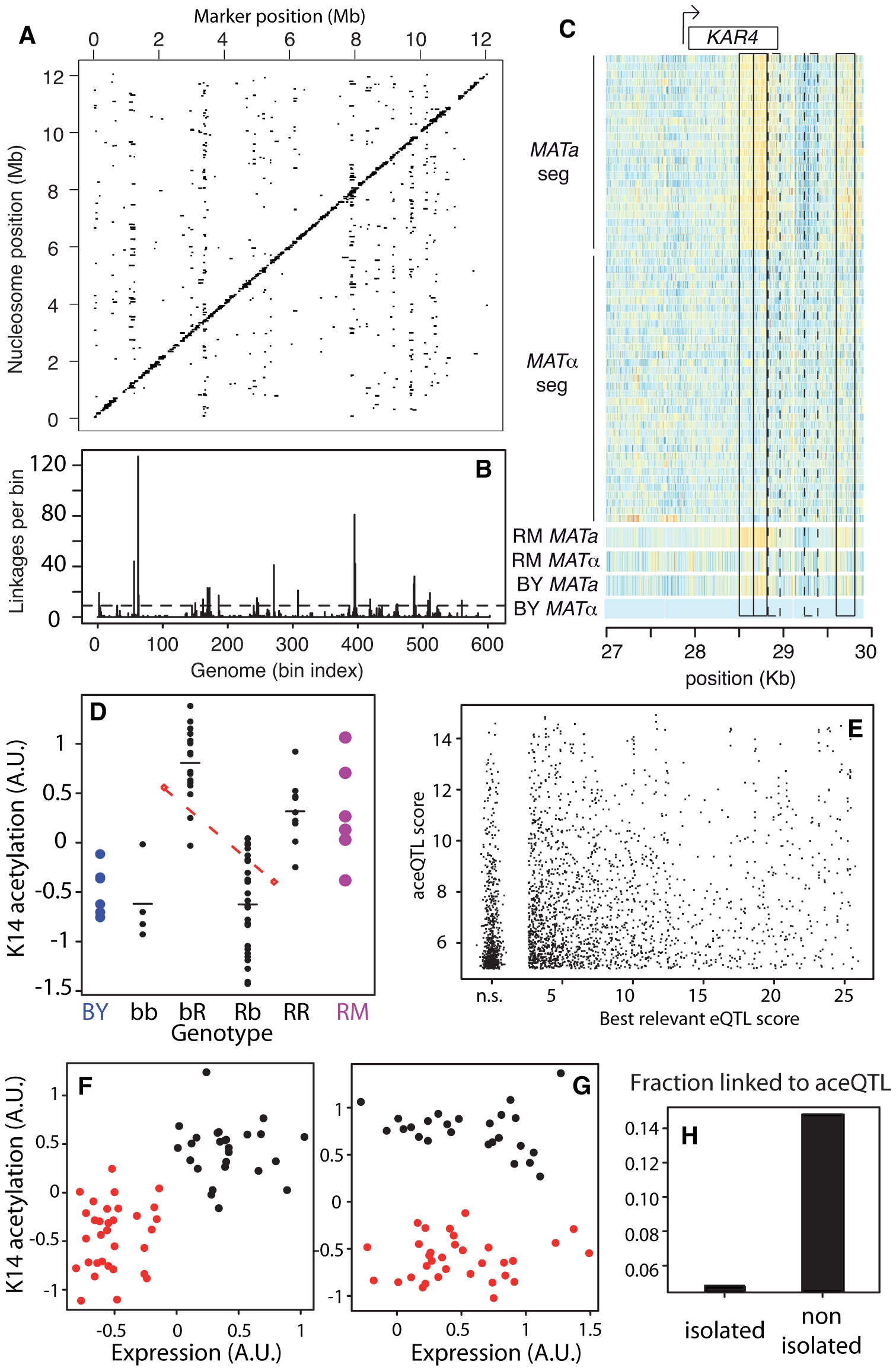 Genetic dissection of epigenomic variations.