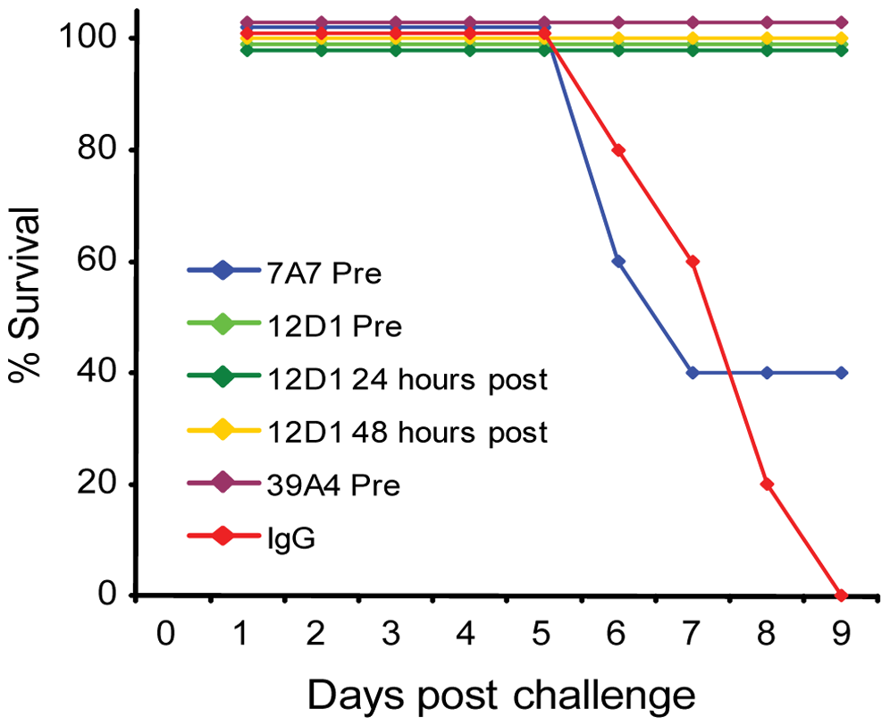 Anti-H3 mAbs protect against H3 virus in vivo.