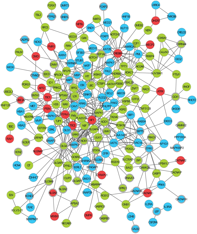 An <i>ASD-associated</i> interaction network.