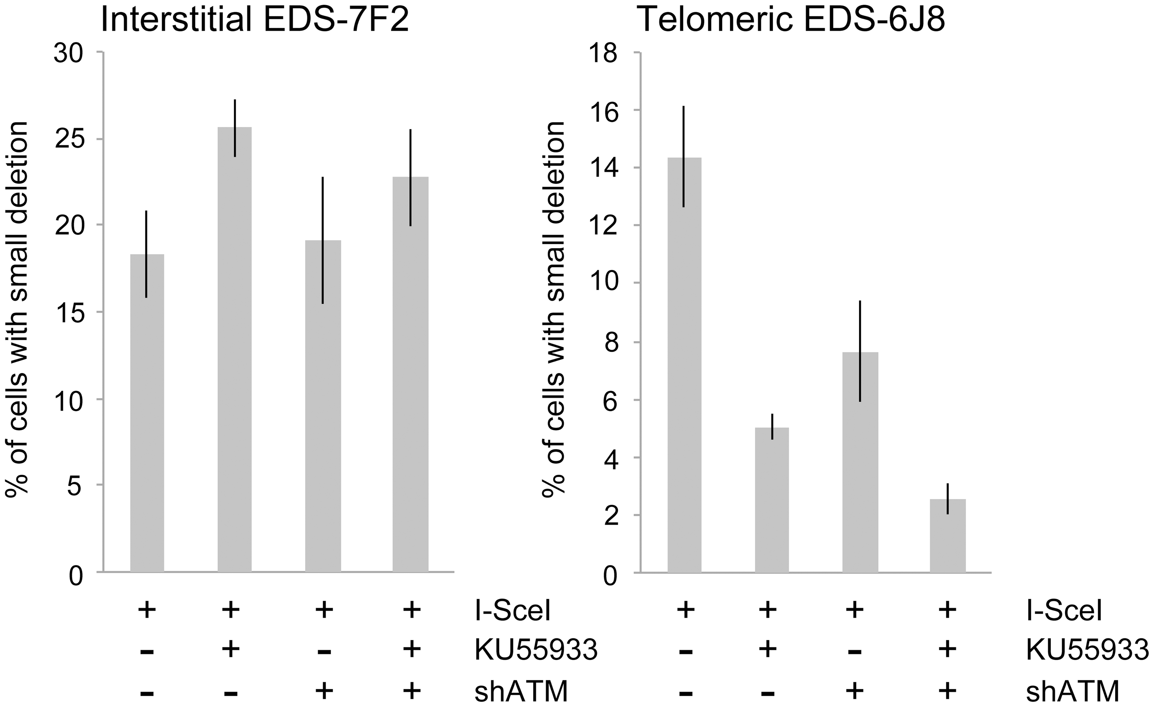 The effect of ATM deficiency on small deletions at interstitial and telomeric DSBs.