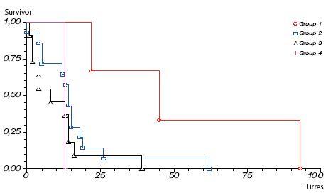 Prežívanie pacientov s karcinómom pankreasu po radikálnej resekcii skupina A operovaní 1. 1. 1996–31. 12. 2000, podľa jednotlivých štádií ochorenia Graph 2. Survival rate of pancreatic cancer patients after pancreatic resection group A operation 1. 1. 1996–31. 12. 2000, according to staging of the disease