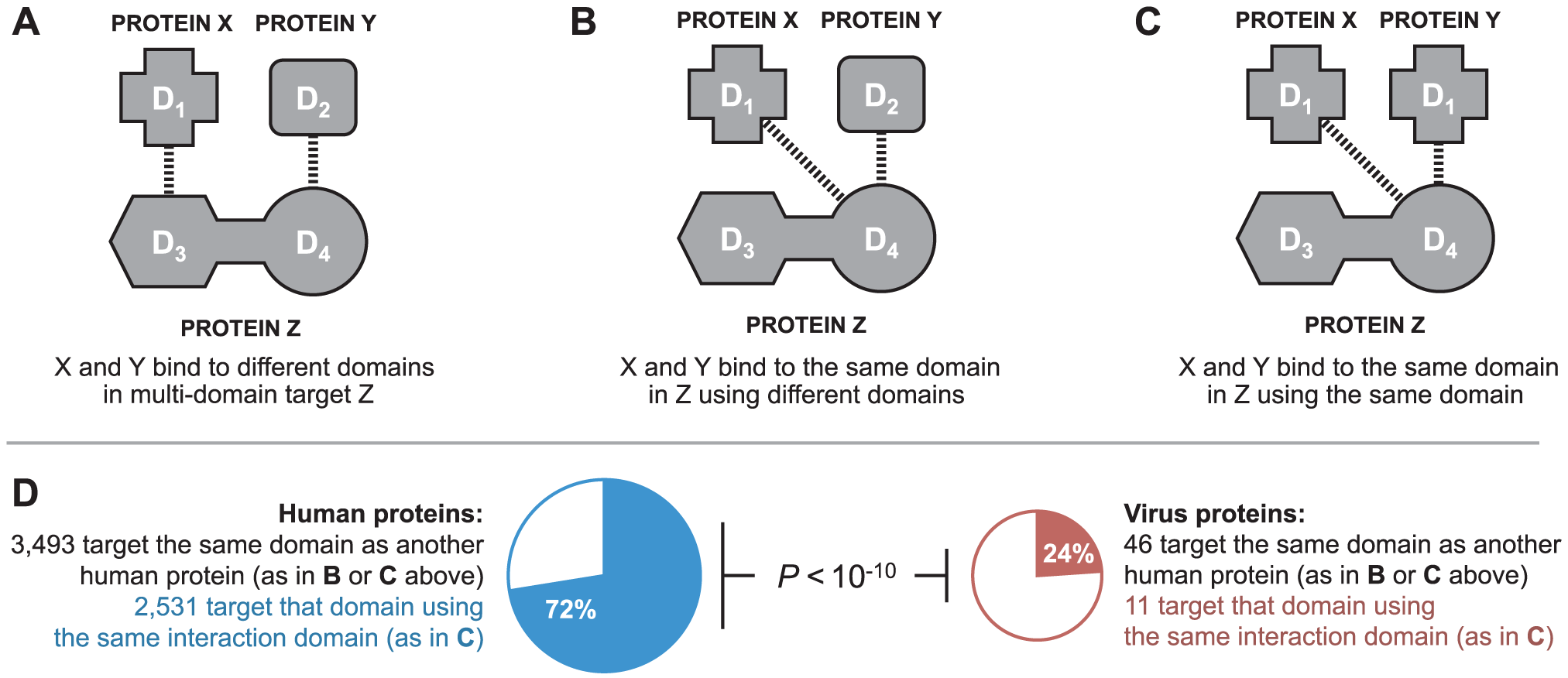 Binding site mimicry evolves differently in virus and host proteins.