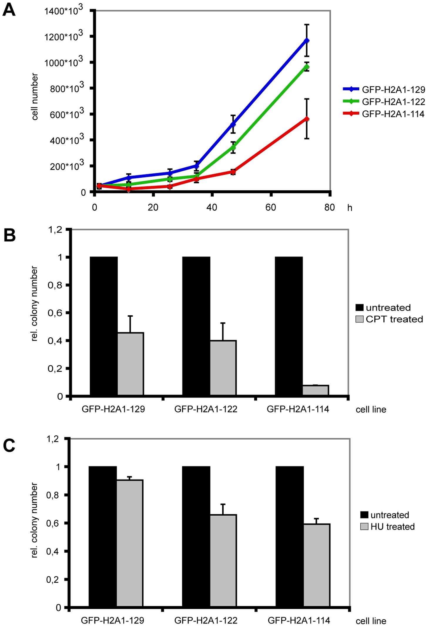 Cells expressing C-terminally truncated GFP-H2A are stress sensitive.