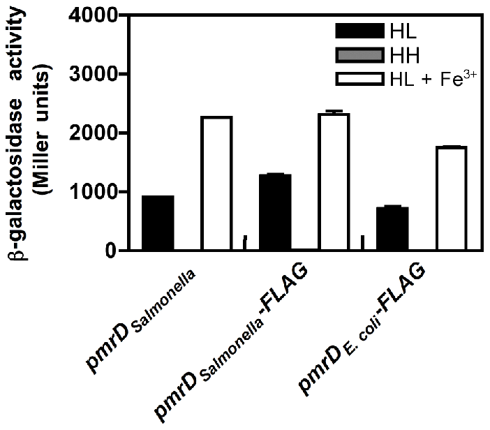 The <i>E. coli</i> PmrD protein enables transcription of PmrA-activated genes in <i>Salmonella</i> experiencing low Mg<sup>2+</sup>.