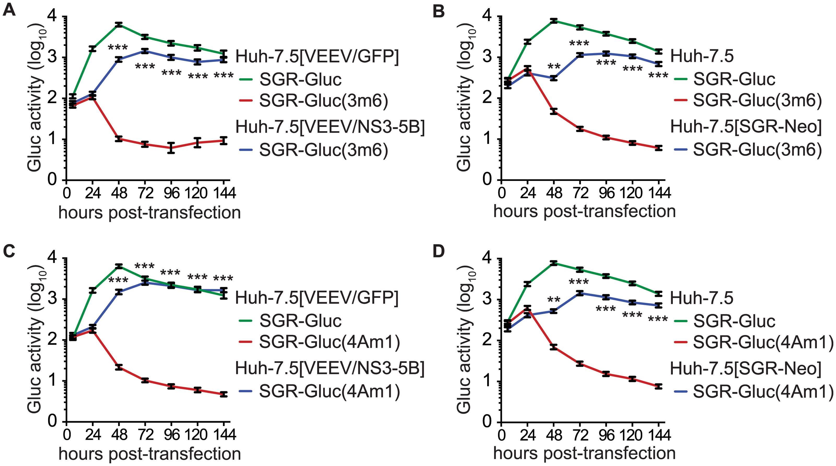 HCV NS3-4A can be complemented in <i>trans</i>.
