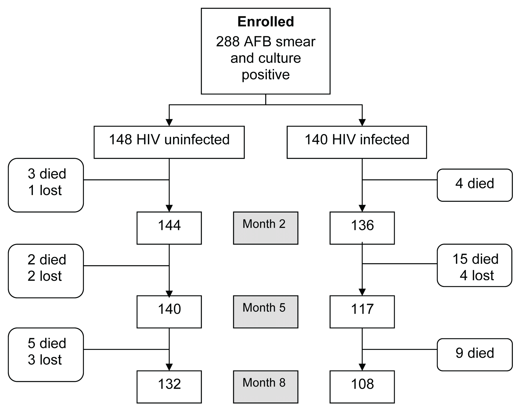 Study profile during the 8-mo TB retreatment period.