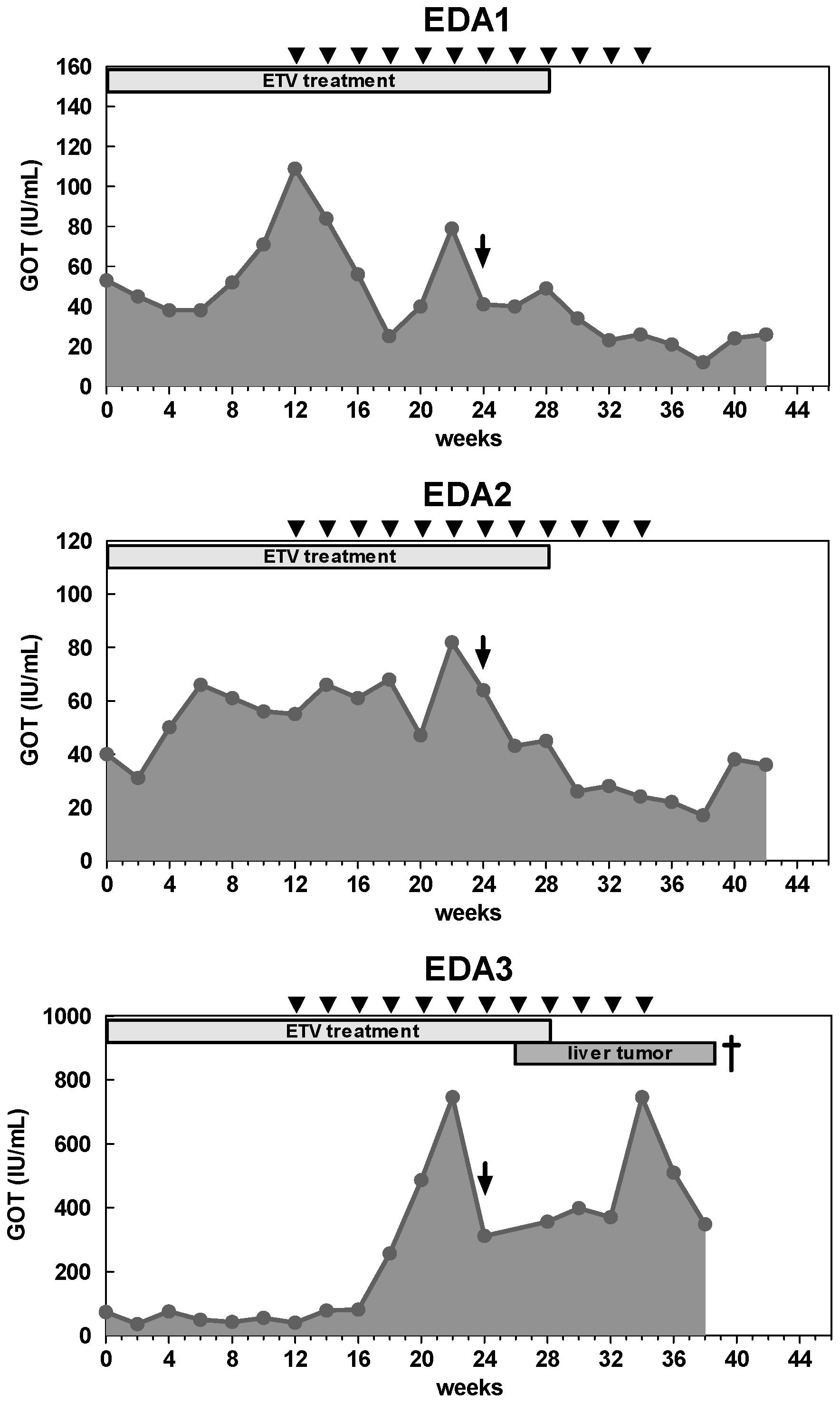 Liver transaminase GOT levels of woodchucks with combination treatment.
