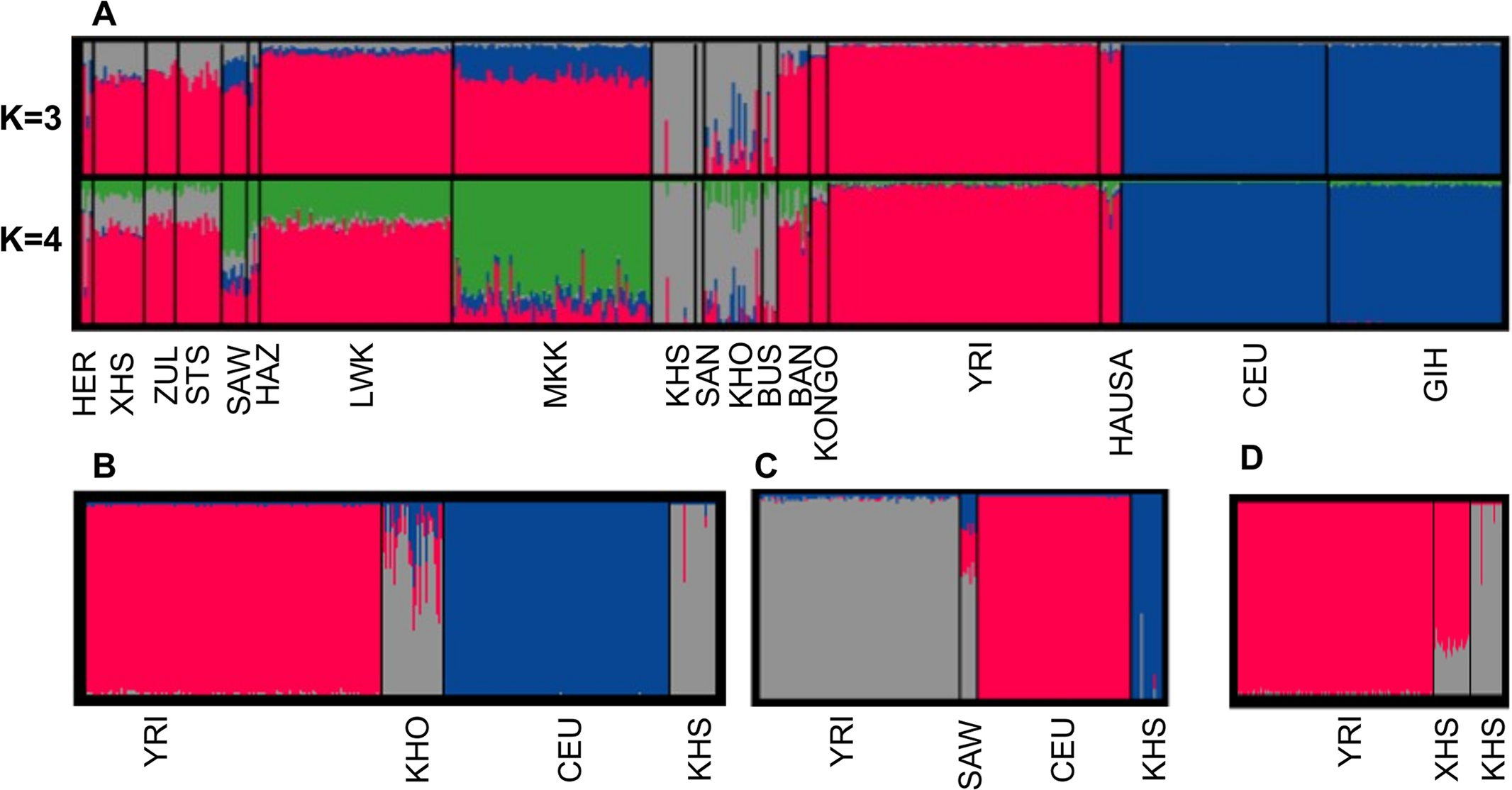 (A) Admixture analysis in southern African and other sub-Saharan African populations compared with Europeans and Asians.