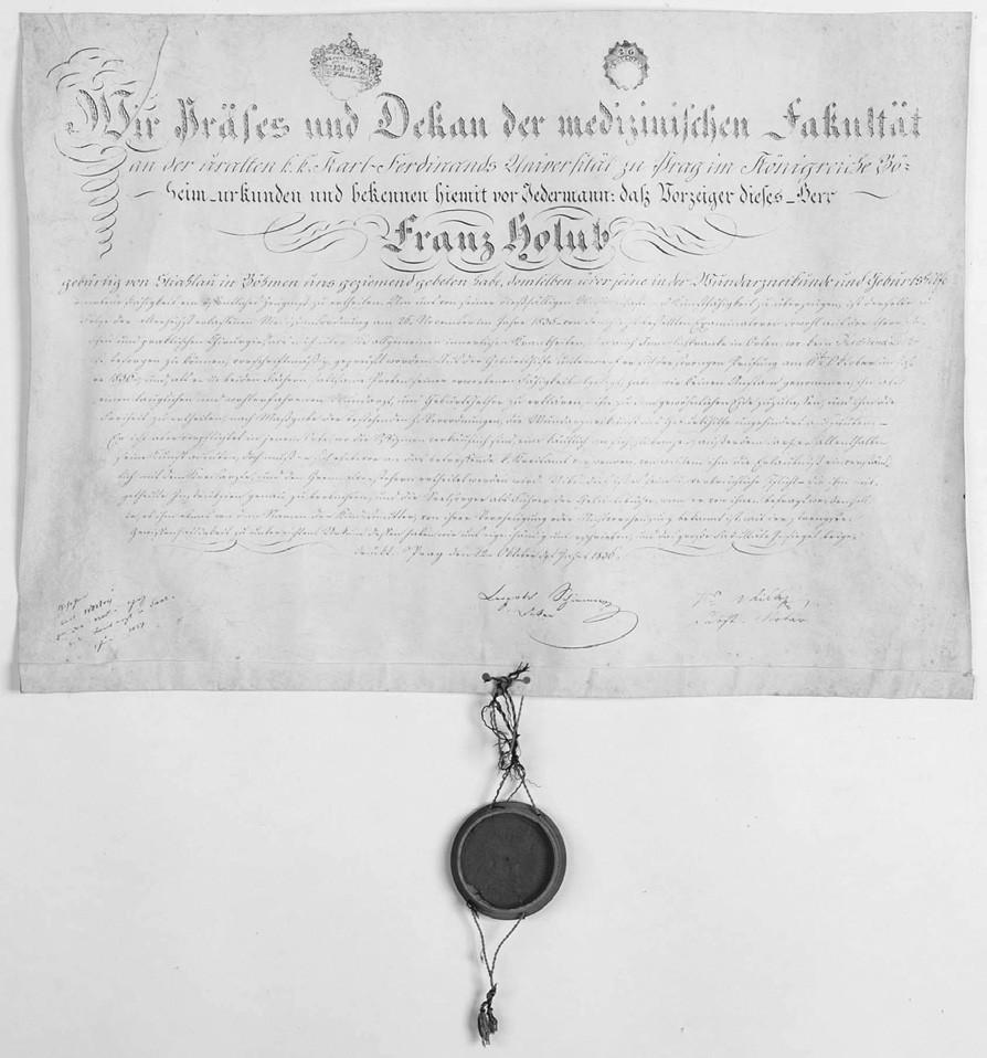 Univerzitní diplom ranlékaře Františka Holuba z roku 1836 (Foto Jiří Vaněk)
