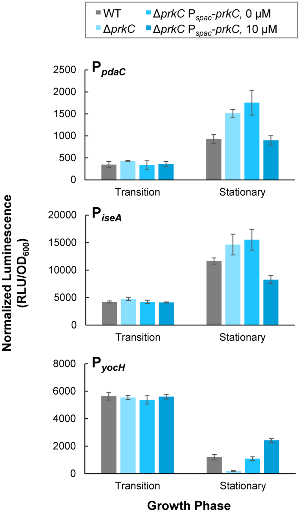 Inducible PrkC expression complements Δ<i>prkC</i> effects on expression of <i>WalR</i> regulon genes during stationary phase.