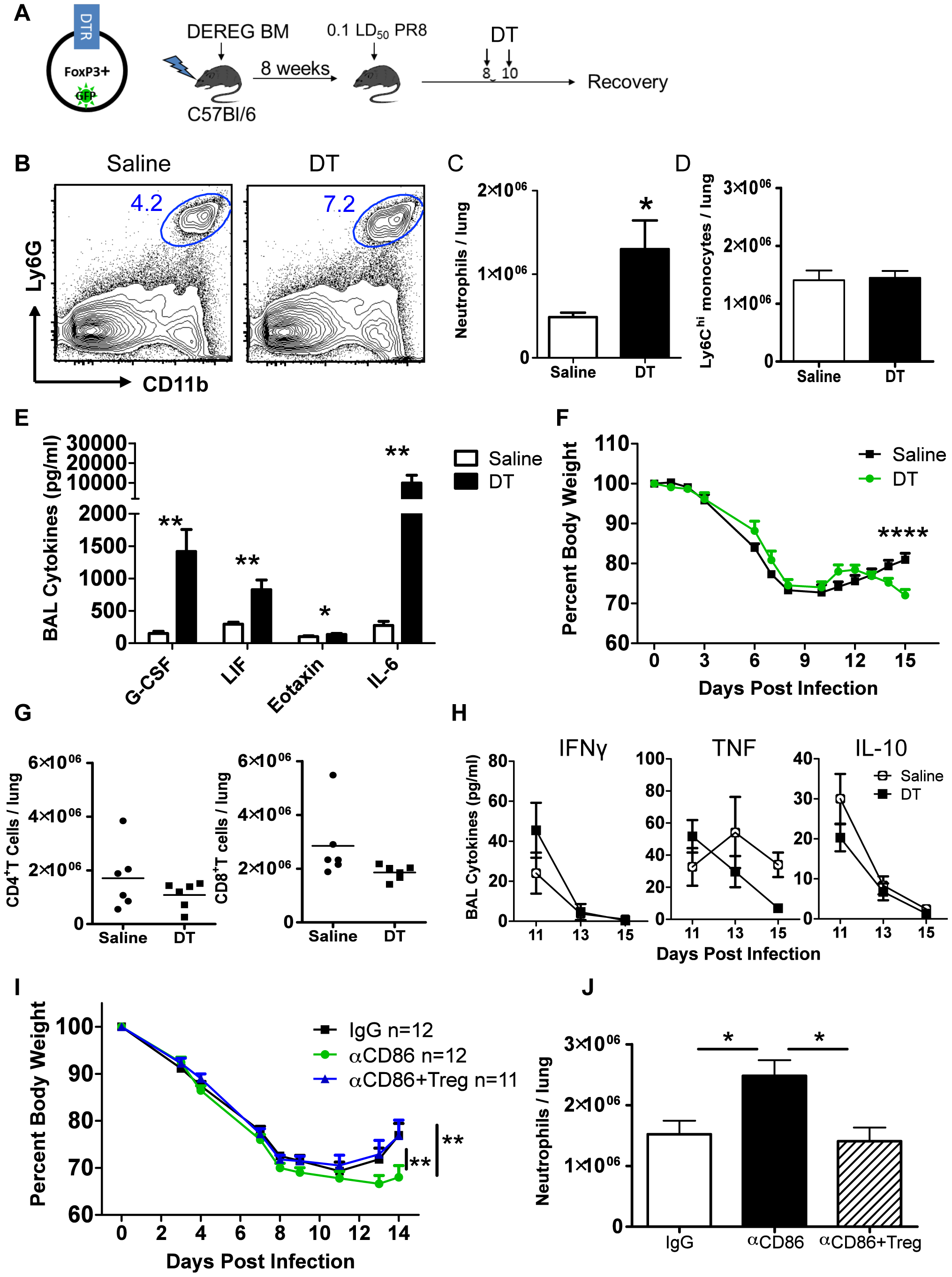 Treg cells promote recovery after IAV infection by limiting innate inflammation.