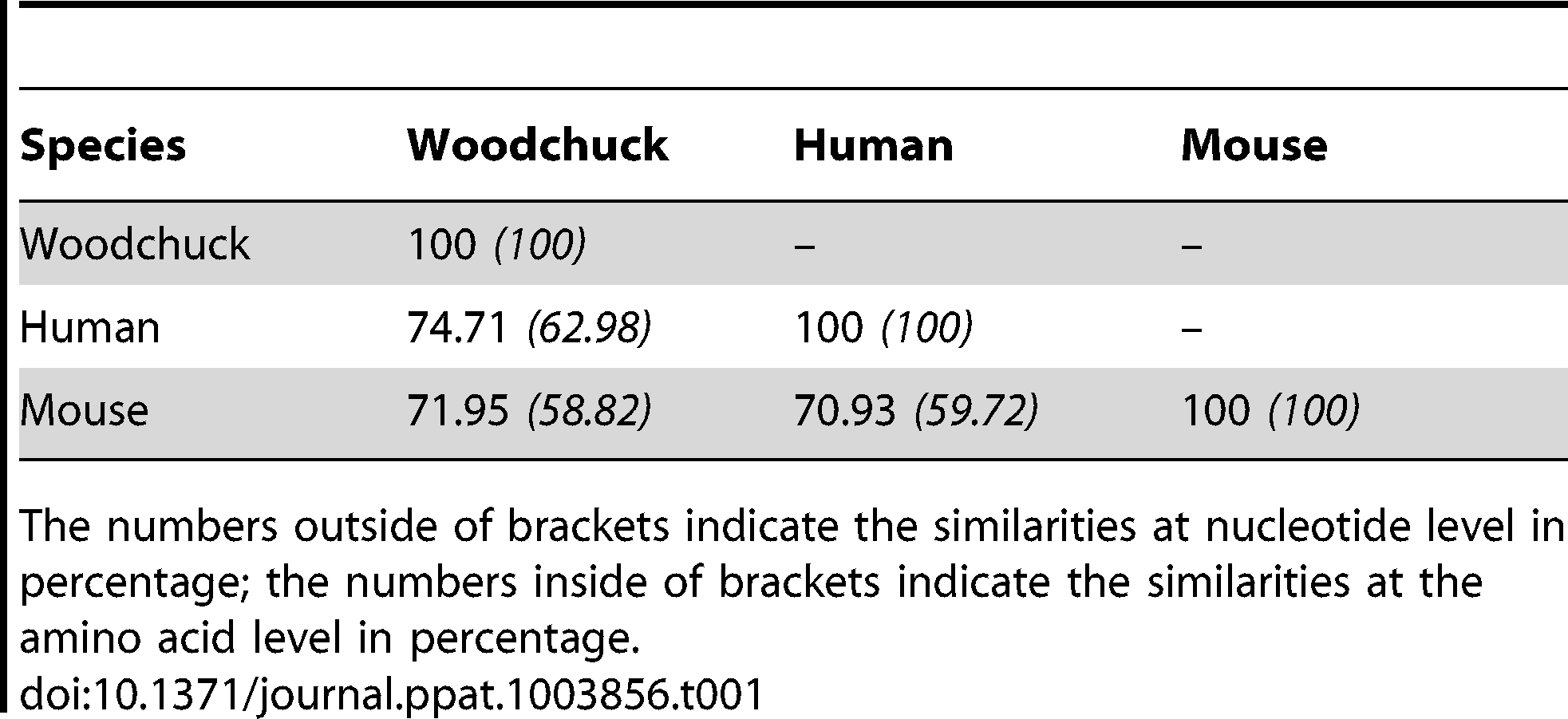 Homology comparison of woodchuck, human and mouse PD-1.