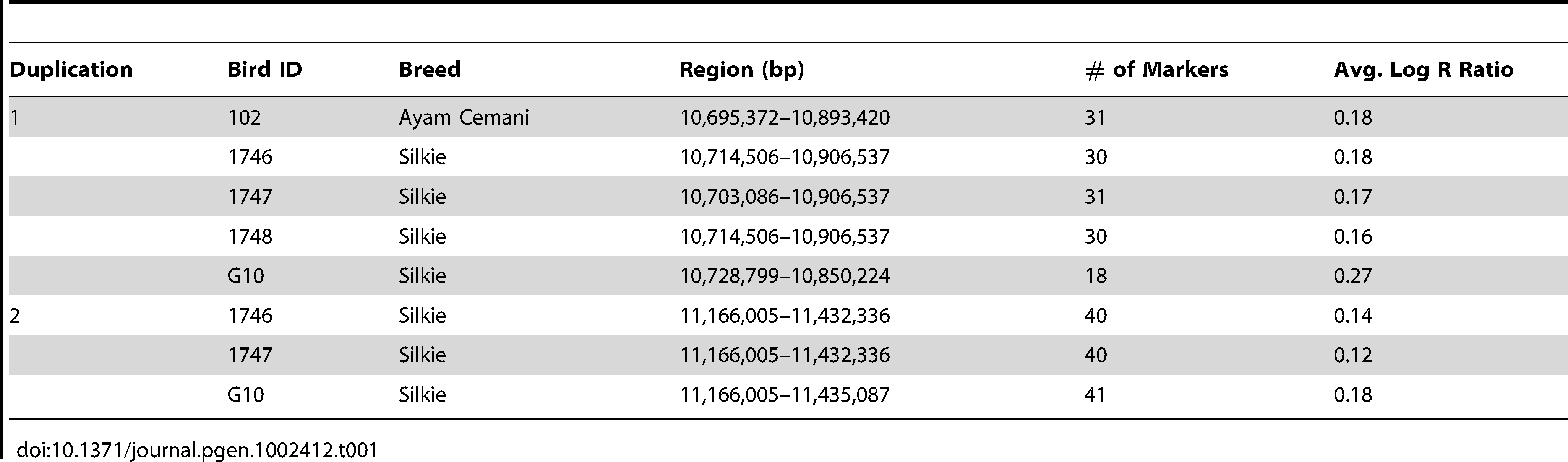 Duplicated genomic regions associated with the FM phenotype identified using SNP data from the 60K Chicken iSelect chip on an individual basis.