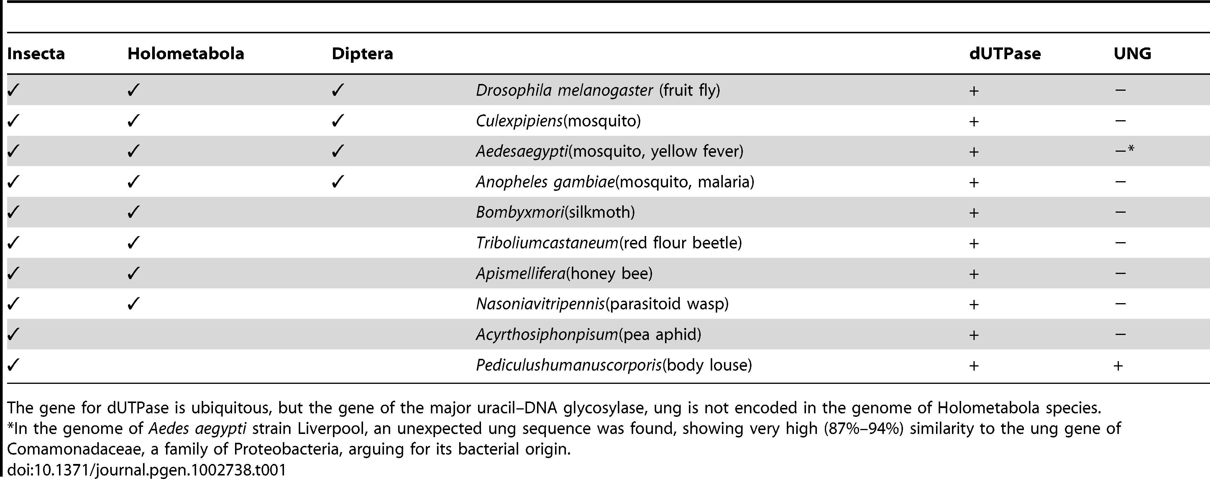 Occurrence of genes encoding dUTPase and UNG in different insects.